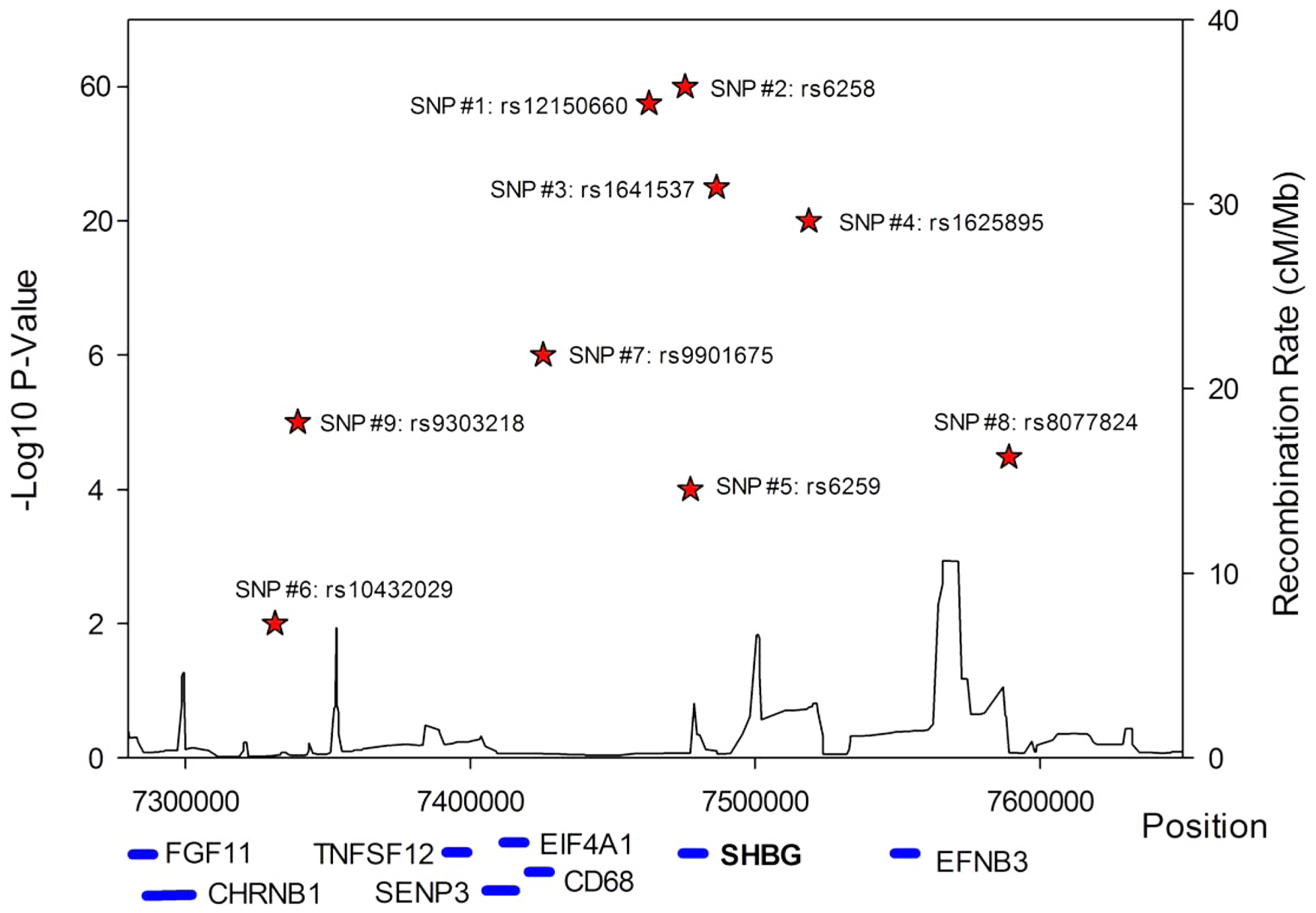 Allelic heterogeneity at the <i>SHBG</i> gene locus.