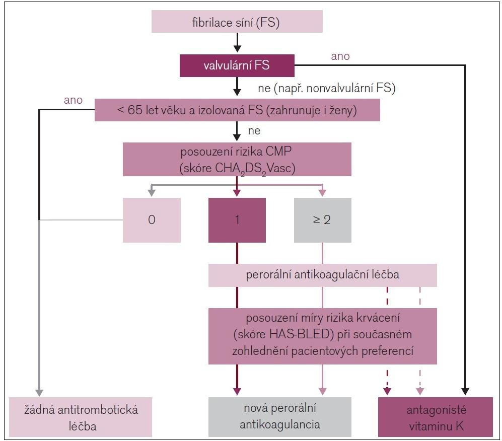 Antikoagulační léčba pacienta s fibrilací síní v prevenci CMP (aktualizovaná doporučení ESC 2012).