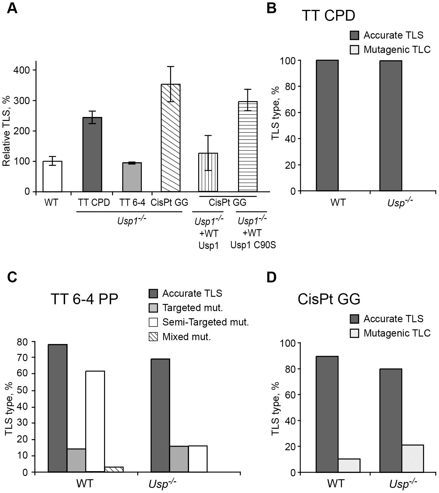 TLS in <i>Usp1<sup>−/−</sup></i> mouse embryo fibroblasts.