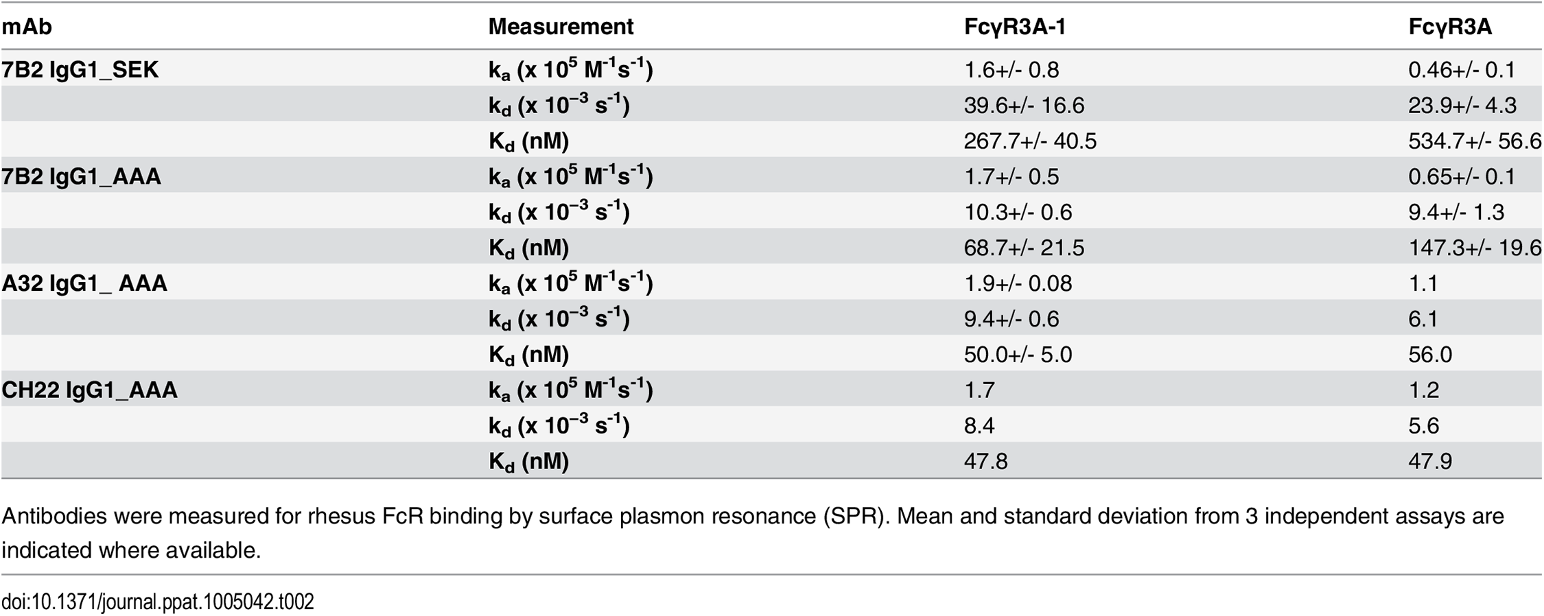Binding rate constants and affinities of rhesus FcγR3 binding to mAbs.