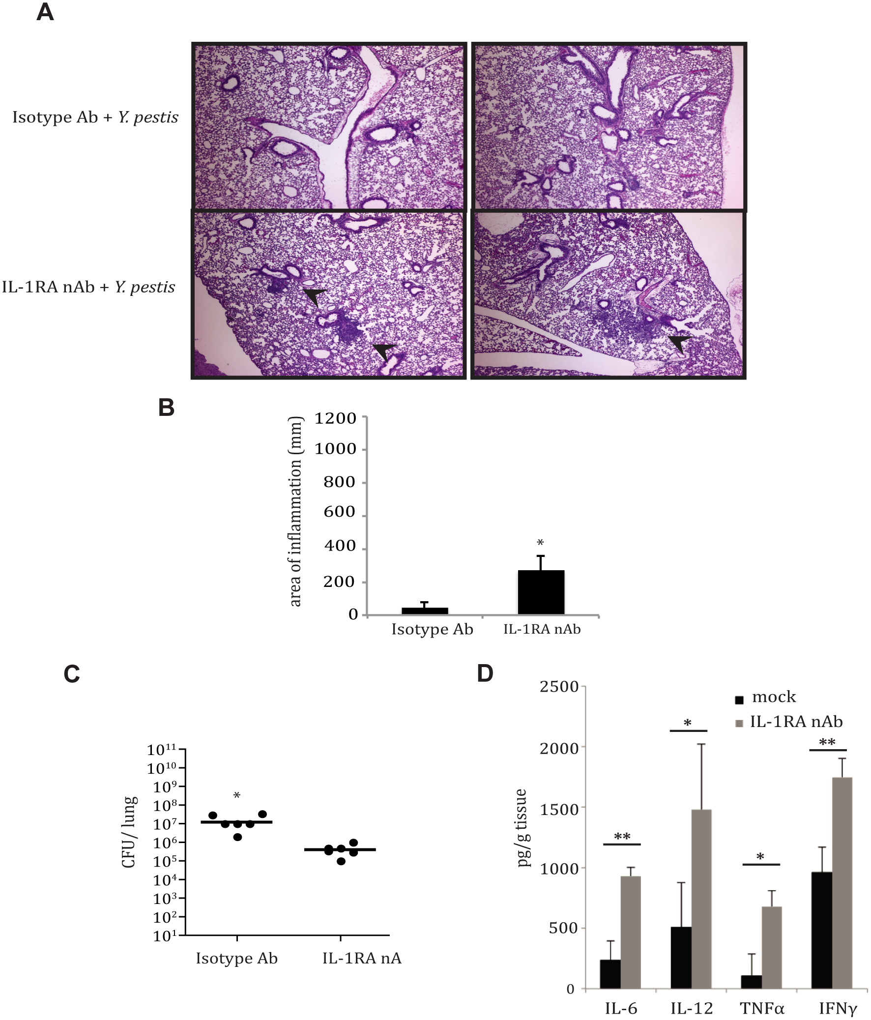 IL-1RA contributes to control of <i>Y</i>. <i>pestis</i> replication and pathology in the lung.