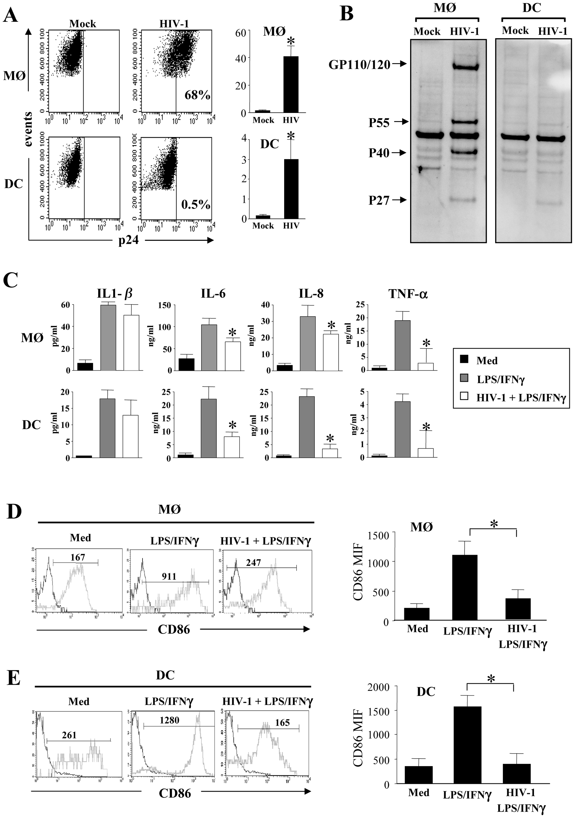 Impact of HIV infection on cytokine secretion and maturation of monocyte-derived macrophages and monocyte-derived DCs.