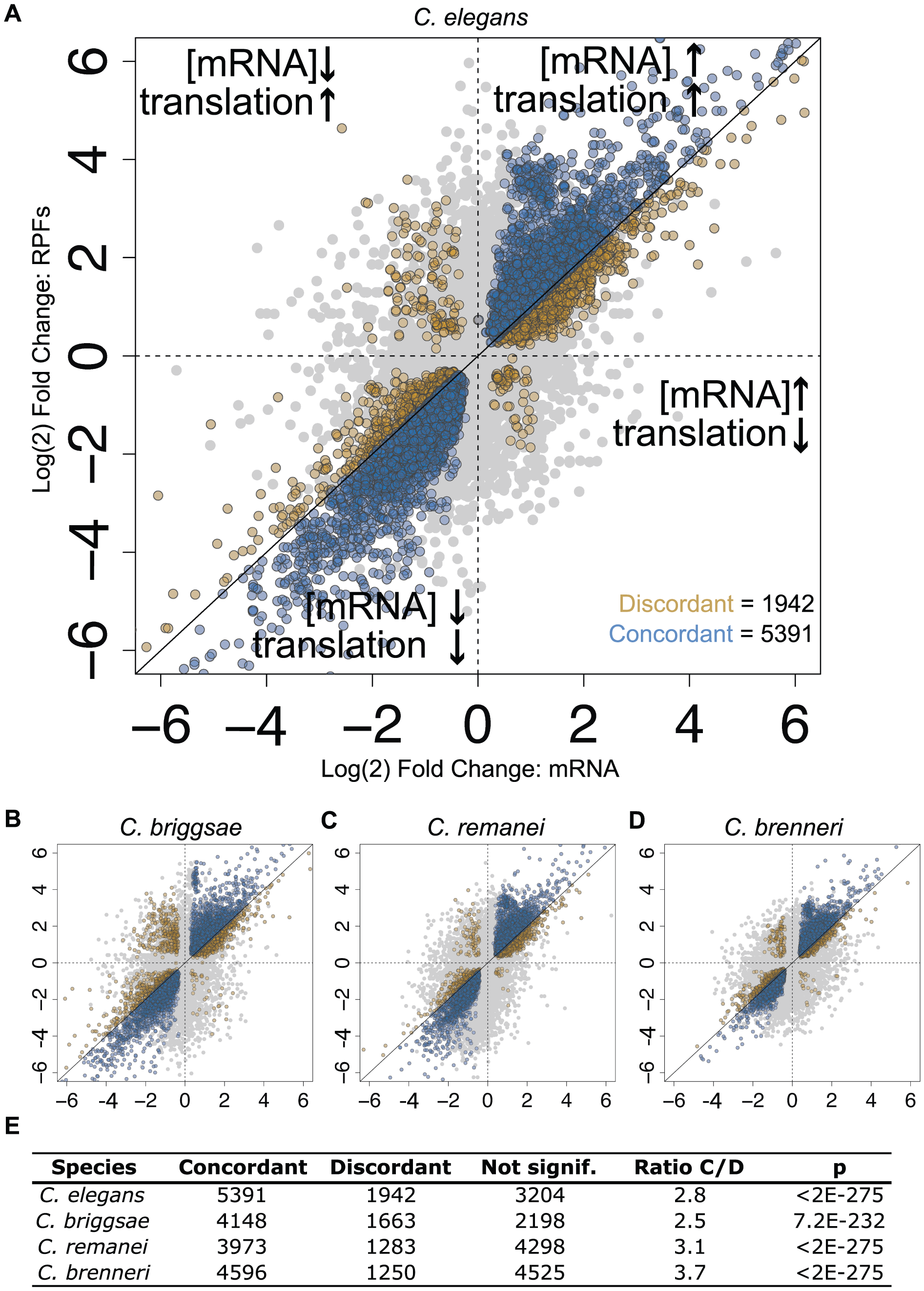 Changes in translation efficiency and mRNA abundance tend to act cooperatively.