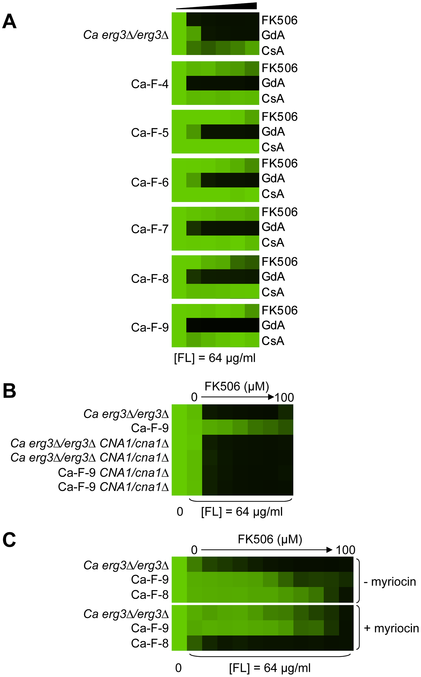 Six <i>C. albicans</i> lineages evolved with azole and FK506 share the same cross-resistance profile, and a mutation in <i>CNA1</i> and <i>LCB1</i> confers resistance.