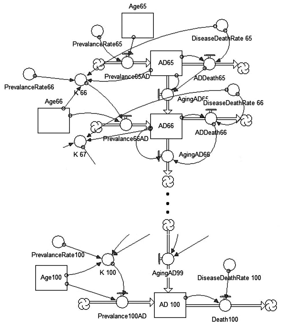 """Diagram """"Stavů a toků"""" model pacientů s AD – výřez, vlastní zpracování"""