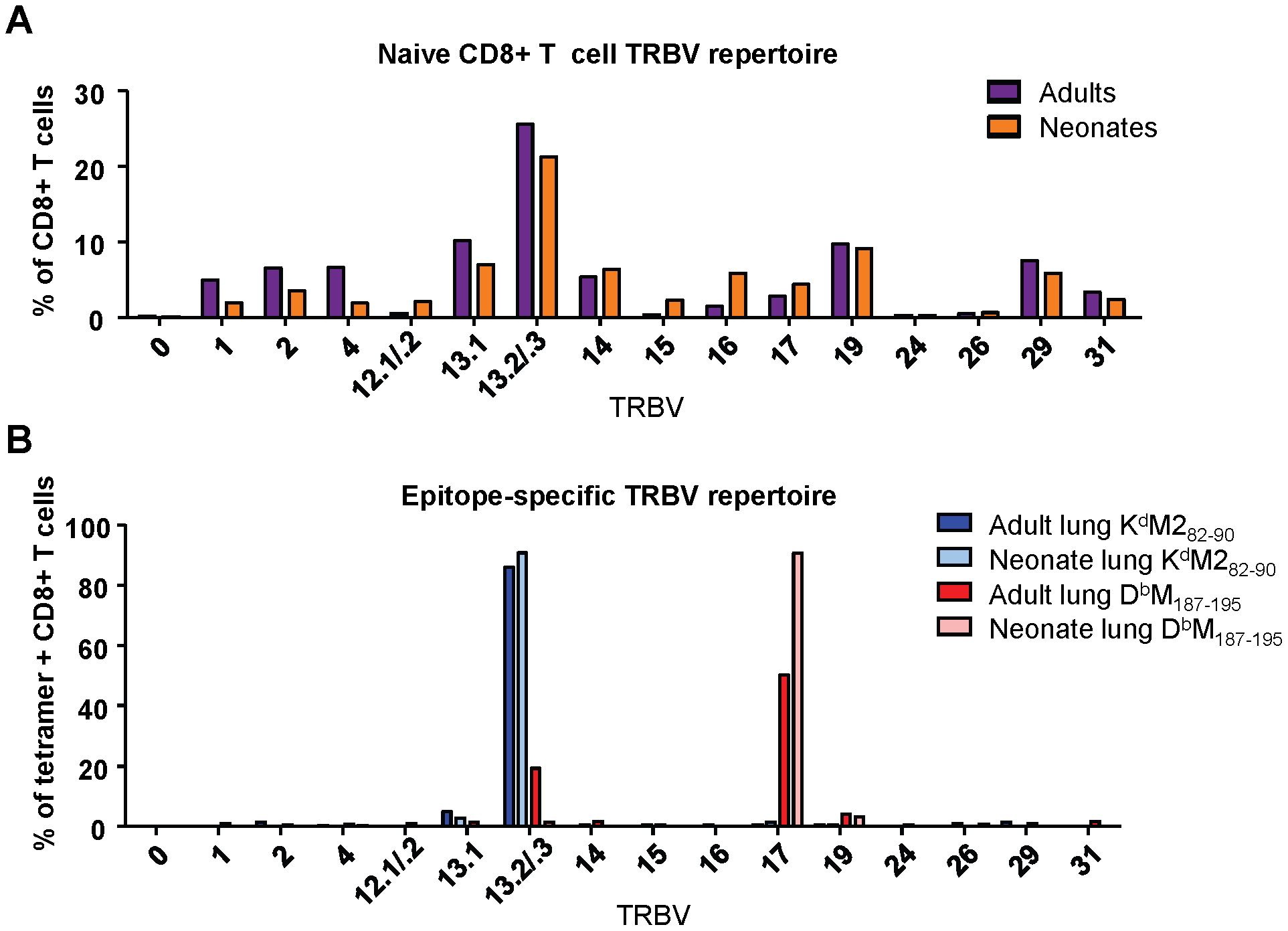 TCR Vβ screening of naïve and epitope-specific CD8+ T cells in adult and neonatal mice.