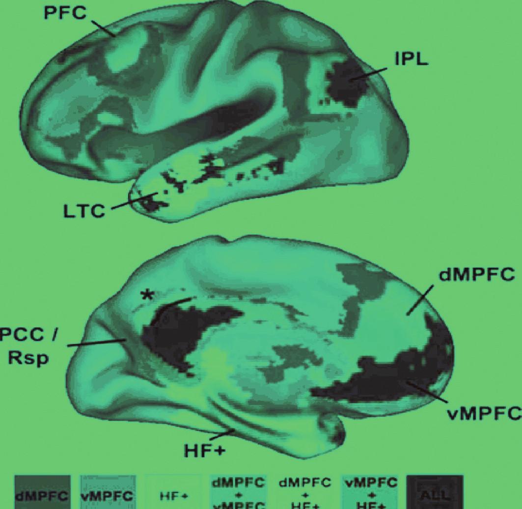 """Těžiště (""""náby"""", angl.hubs) a barevně vyznačené podsystémy implicitní sítě lidského mozku. Legenda: Třemi těžišti jsou • dorzomediální prefrontální kůra (dMPFC), • ventromediální prefrontální kůra (vMPFC), a • hipokampální formace (HF+). Kombinovaná mapa je velmi blízká mapě získané PET Zadní cingulární a retrosplenická kůra (PCC/Rsp), lobulus parietalis inferior (IPL) a vMPFC jsou korové oblasti v nichž se sbíhají spoje všech ostatních oblastí sítě. dMPFC a HF + jsou funkčně korelované s ostatními oblastmi sítě, nikoli však vzájemně. Patří tedy patrně v odlišným podsystémů. Area 7m (označená hvězdičkou), která je součástí precuneu, součást intrinsické sítě není. LTC je zevní spánková kůra. ALL všechny"""