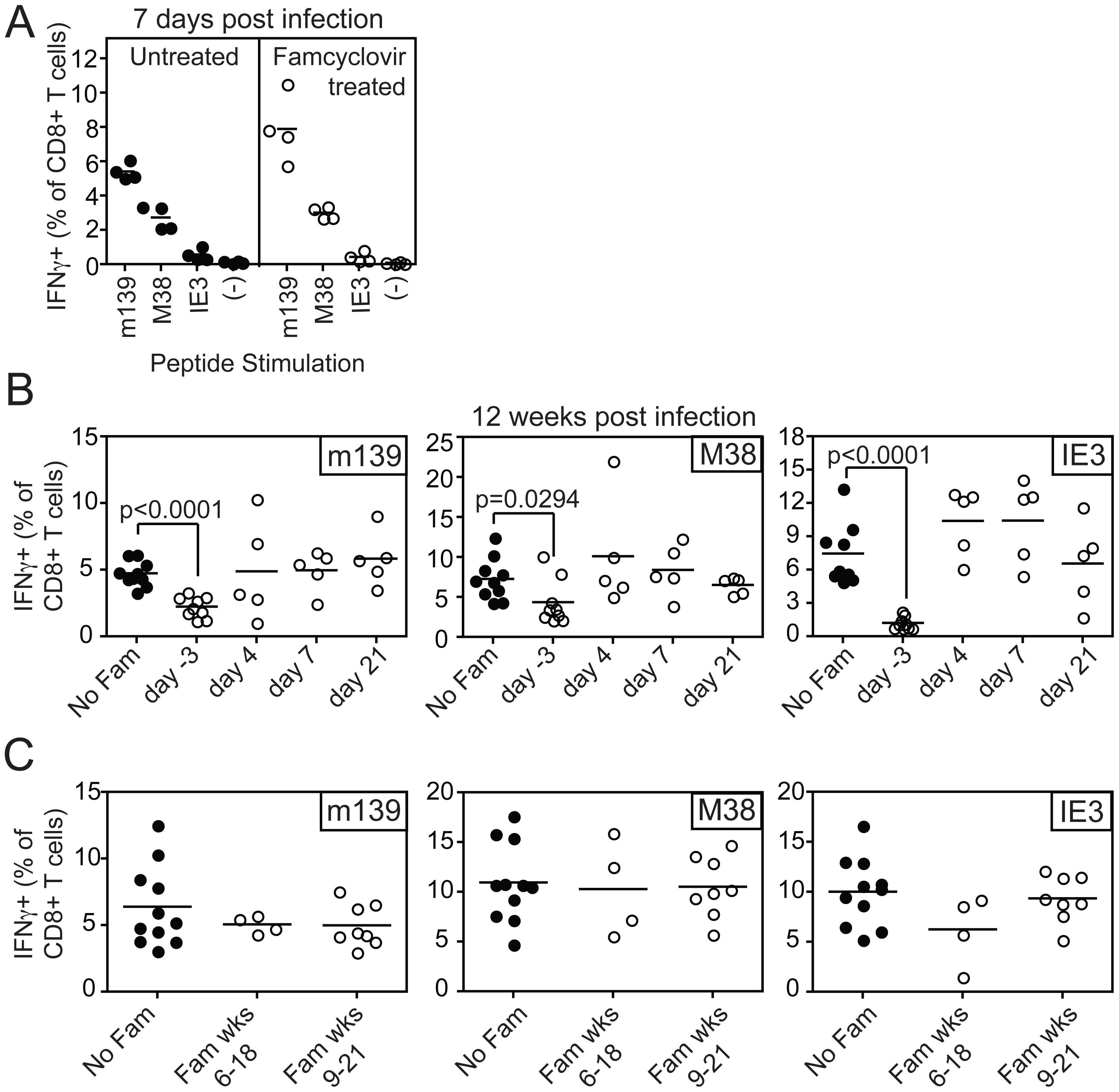 Inhibiting viral replication with famcyclovir does not reduce the size of virus-specific T cell populations.