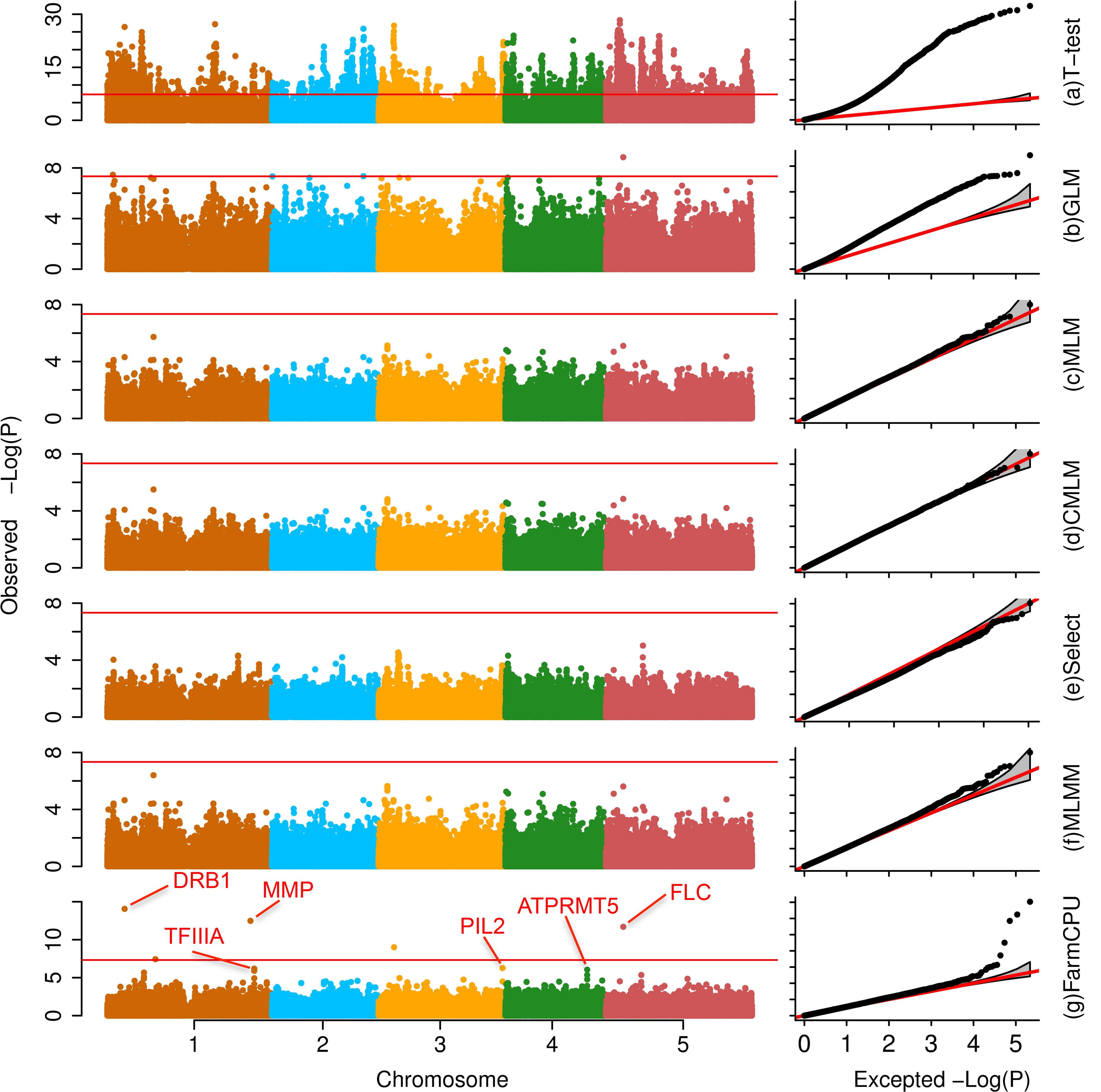 Association studies of flowering time in <i>Arabidopsis thaliana</i>.