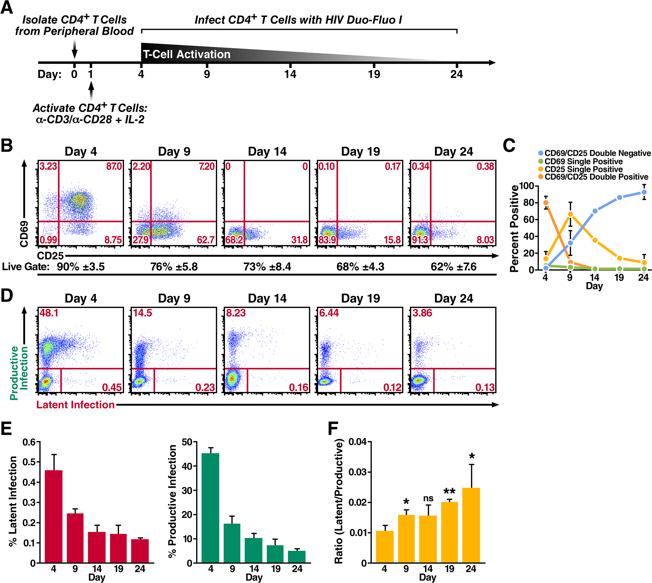 Primary CD4<sup>+</sup> T cells transitioning from an activated state back to a resting state are more likely to become latently infected.
