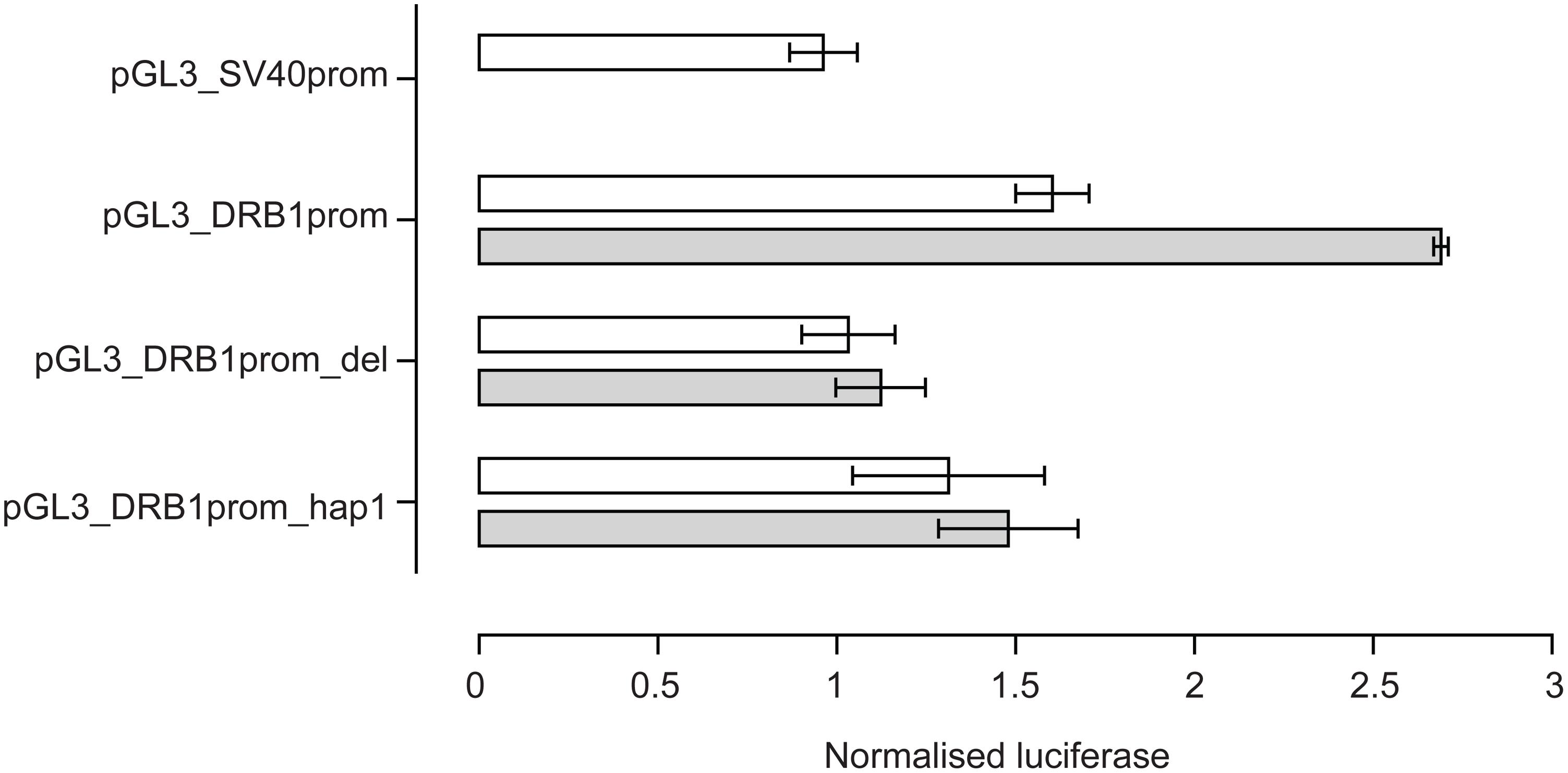 Reporter gene analysis of DRB1 promoter VDRE.
