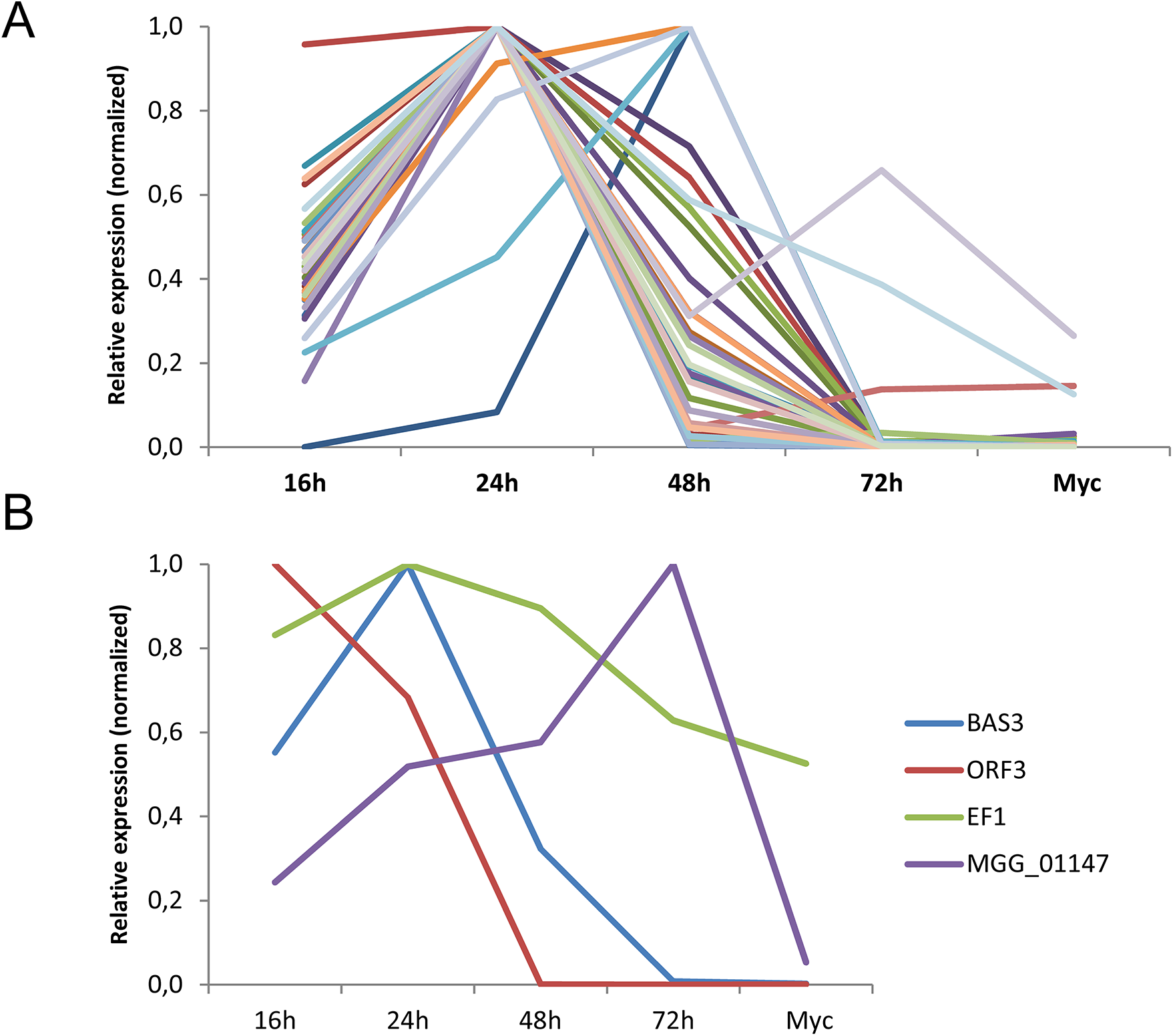The majority of <i>M</i>. <i>oryzae</i> MAX-effectors is expressed specifically during biotrophic infection.