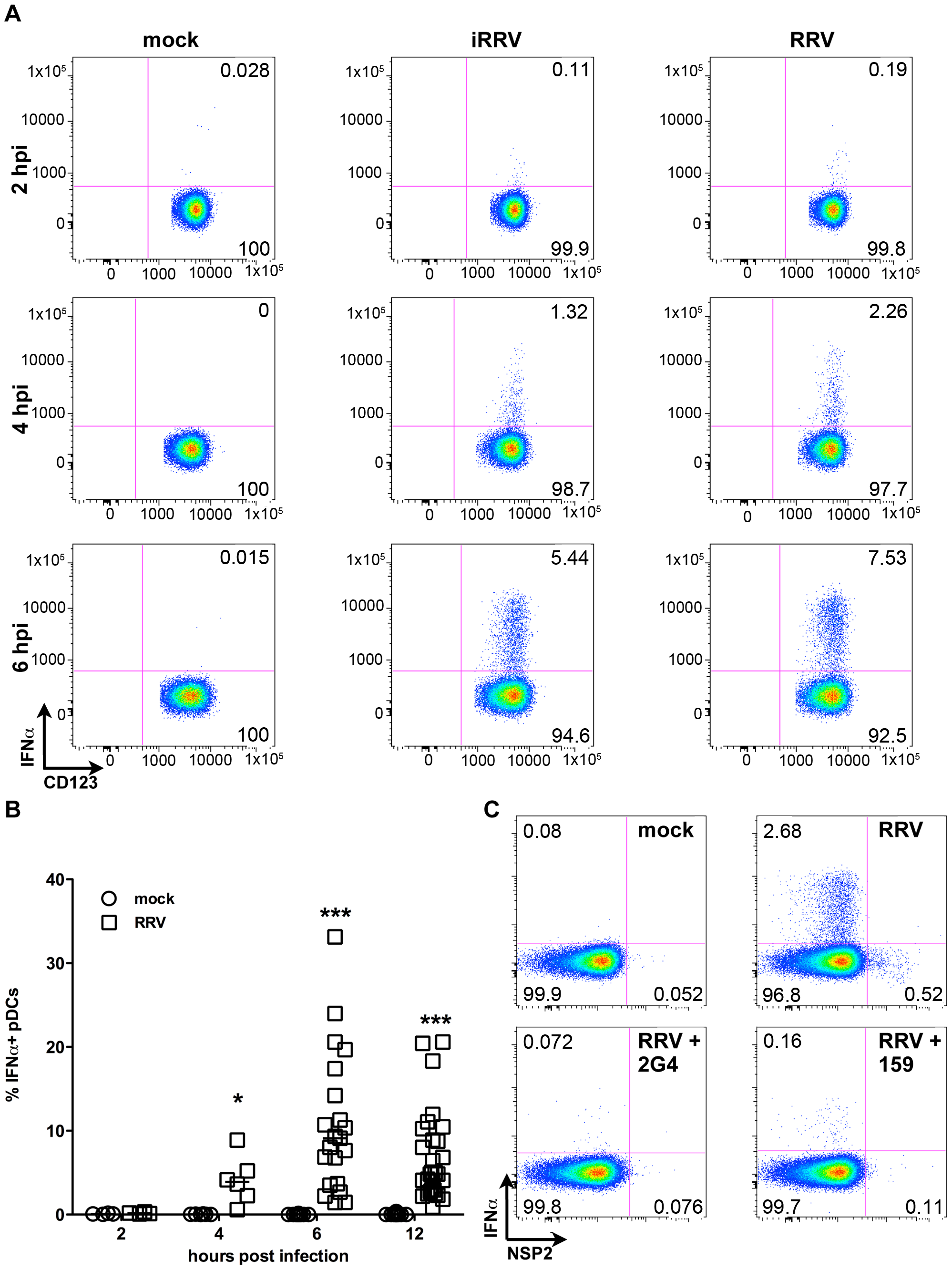Intracellular production of IFNα by pDCs after exposure to live or inactivated RRV.