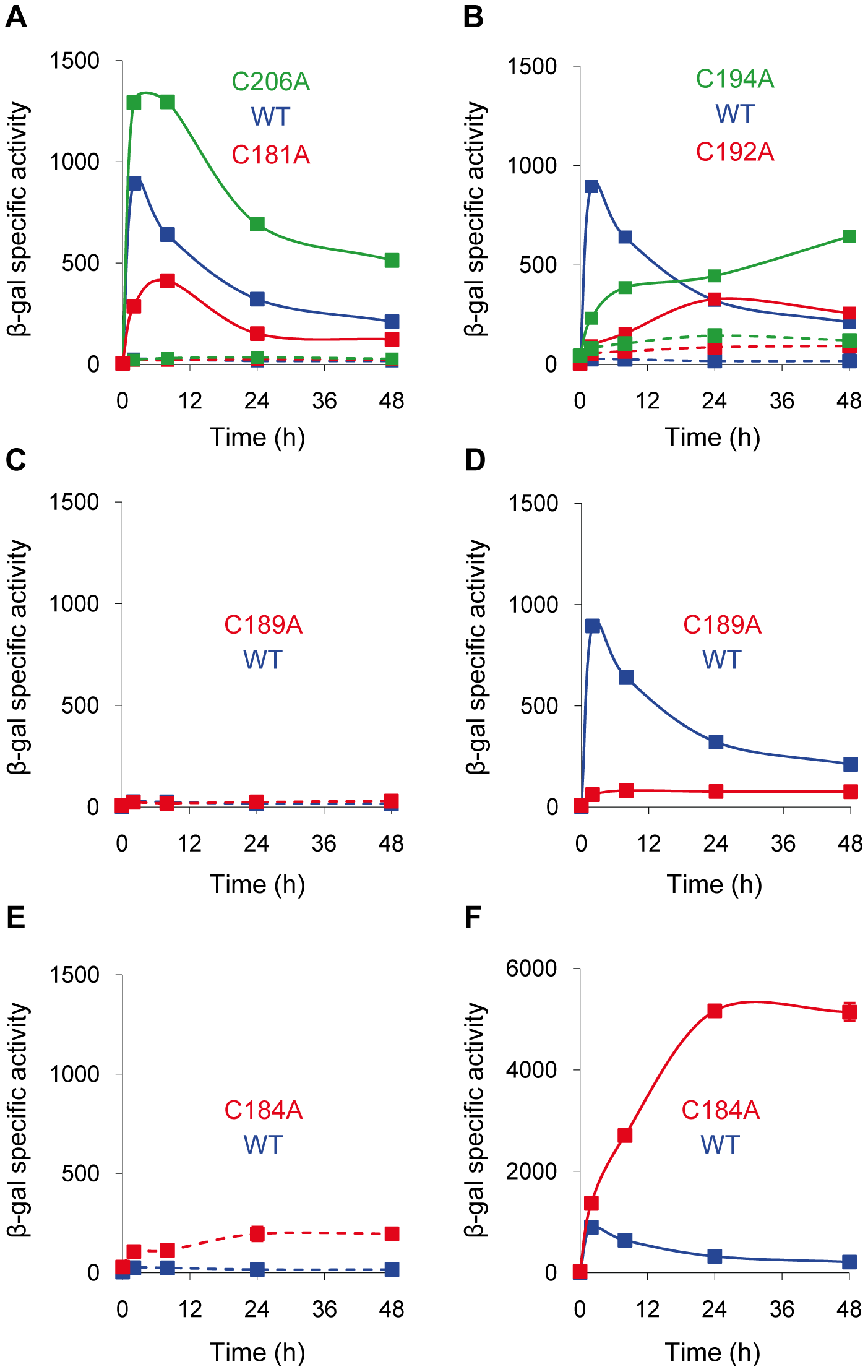Expression of <i>cuoB</i> in strains harboring point mutations in the CRD region of CorE.