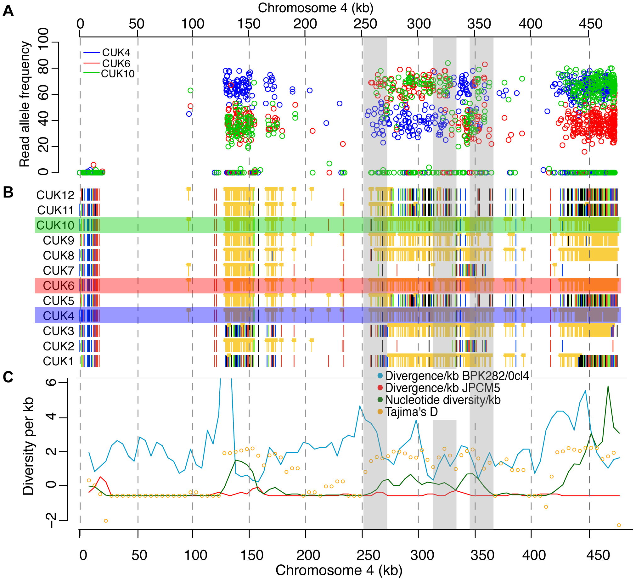 Changes in SNP coverage depth pinpoint recombination breakpoints.
