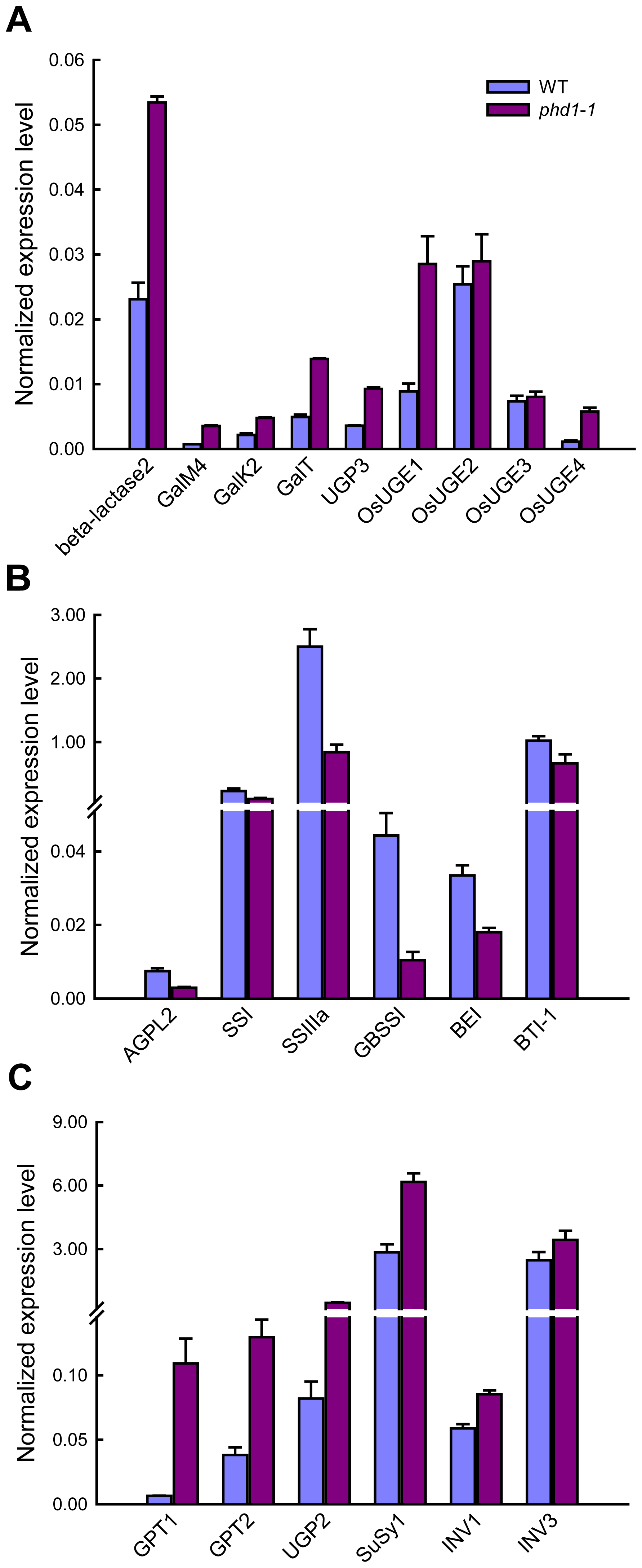 Expression analysis of key genes involved in UDP-Gal biosynthesis and carbohydrate allocation in leaves of <i>phd1</i>-<i>1</i> plants.