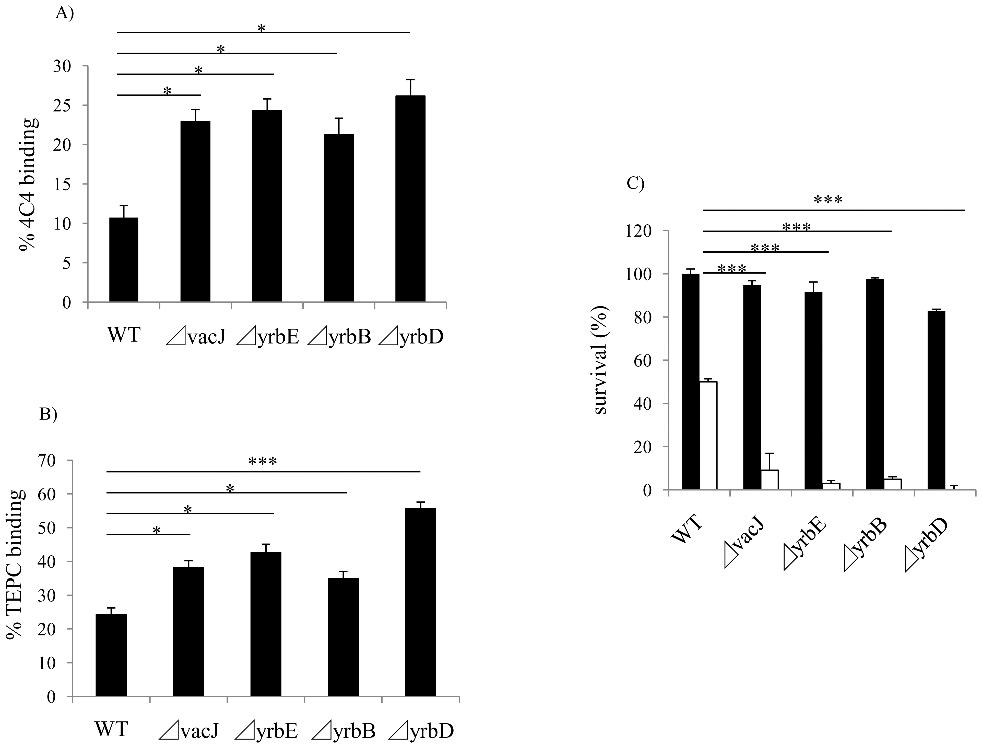 Effect of <i>vacJ</i> and <i>yrb</i> mutants on antibody binding and bactericidal activity.