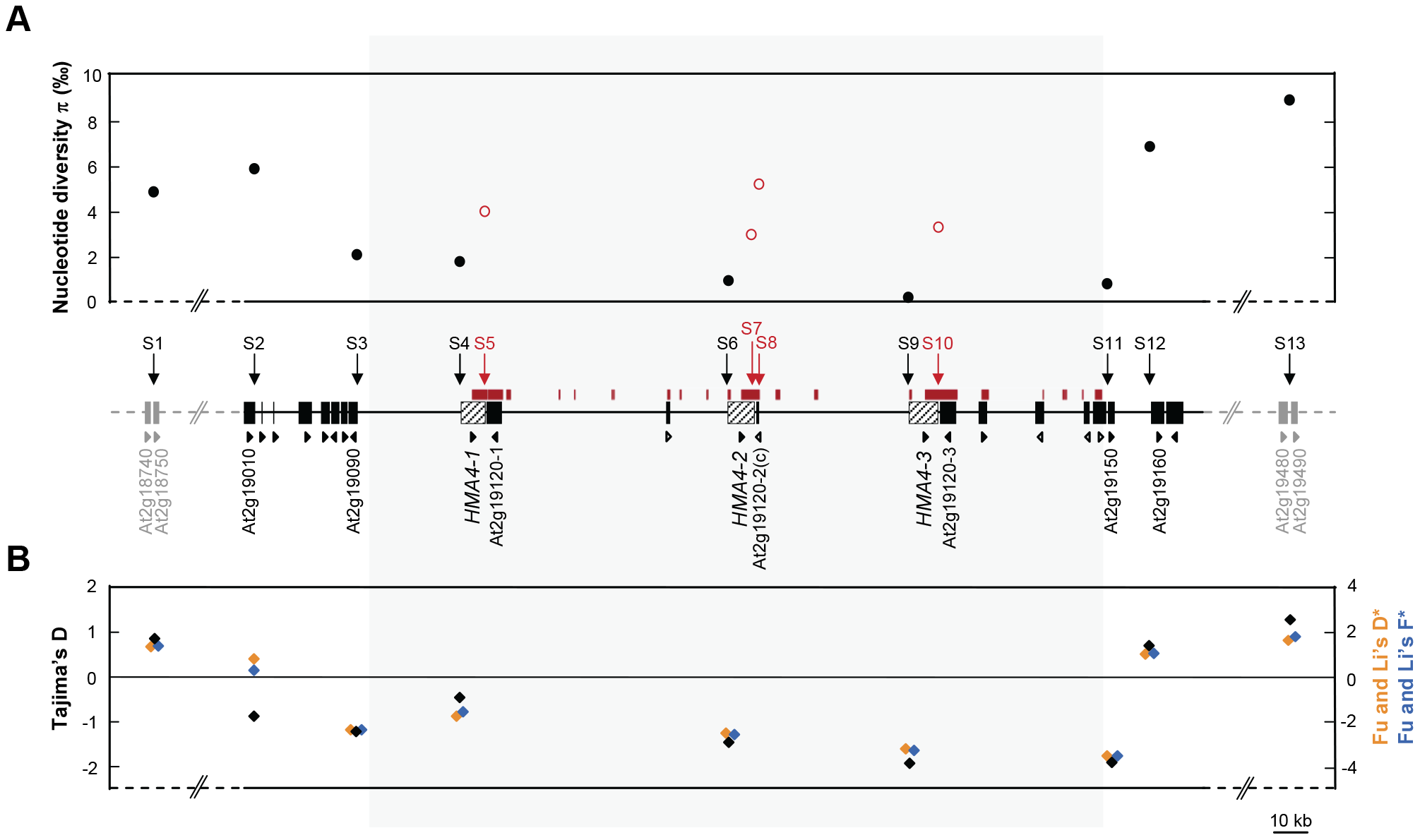 Nucleotide sequence diversity across the <i>HMA4</i> genomic region in <i>A. halleri</i>.