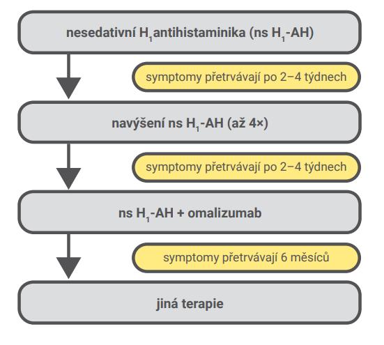Algoritmus terapie chronické spontánní urtikarie [19]