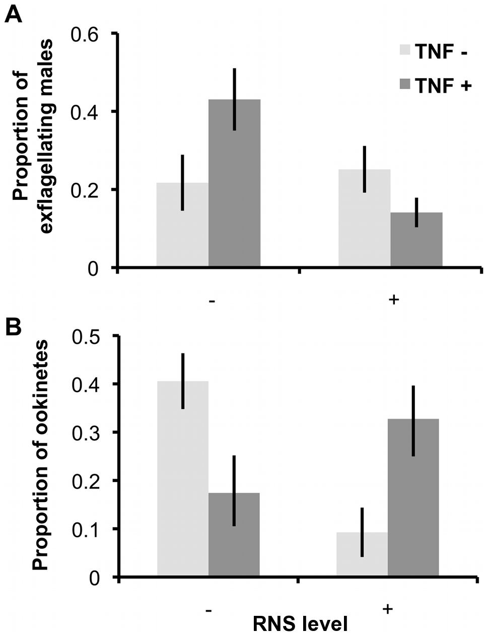 Exflagellation rates and ookinete production after exposure to RNS and TNF-α during gametogenesis.