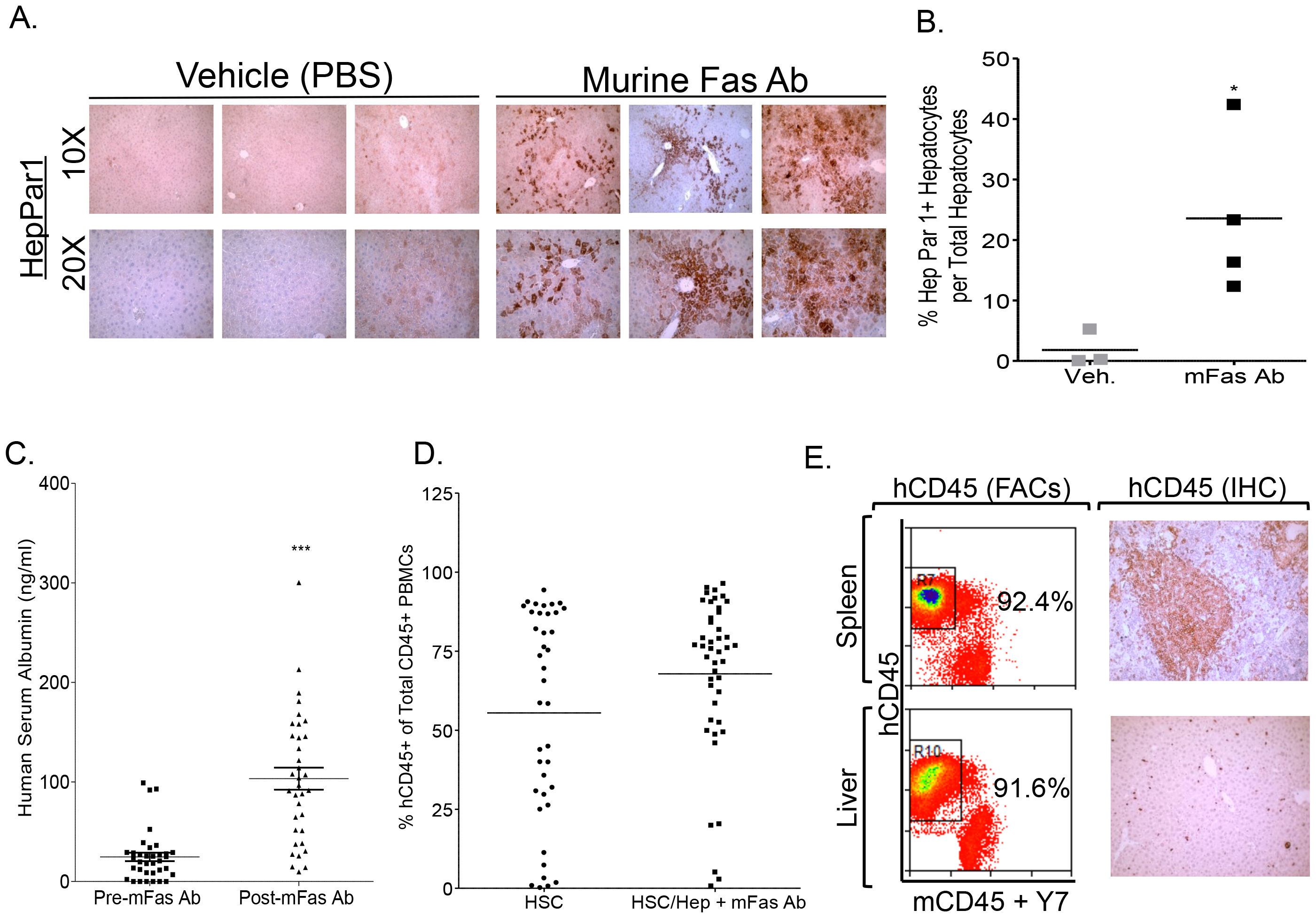 Murine-specific Fas antibody treatment promotes human liver reconstitution in A2/NSG-hu HSC/Hep mice.