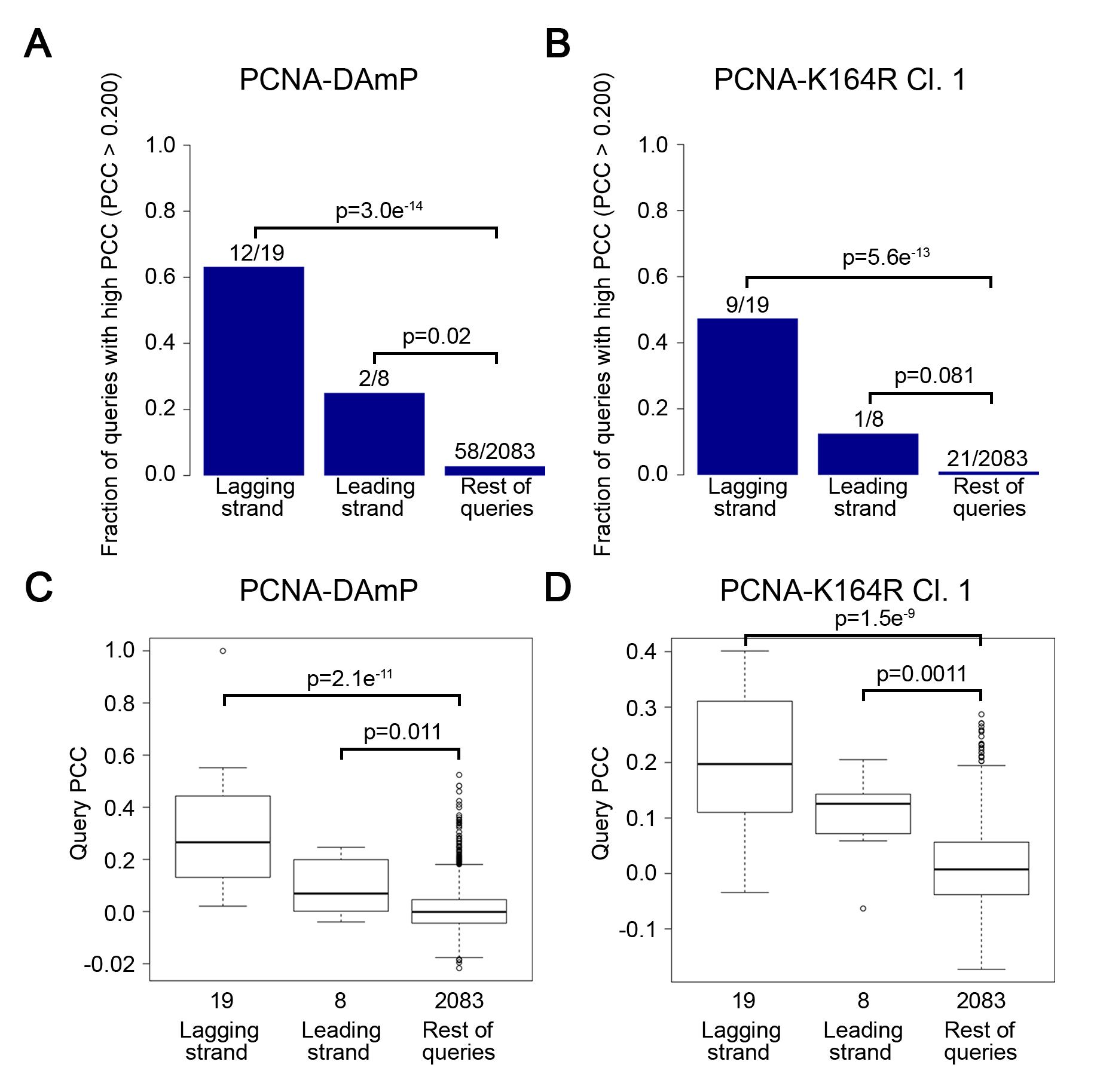 The PCNA-K164R SGA profile strongly resembles lagging strand replication mutant profiles.