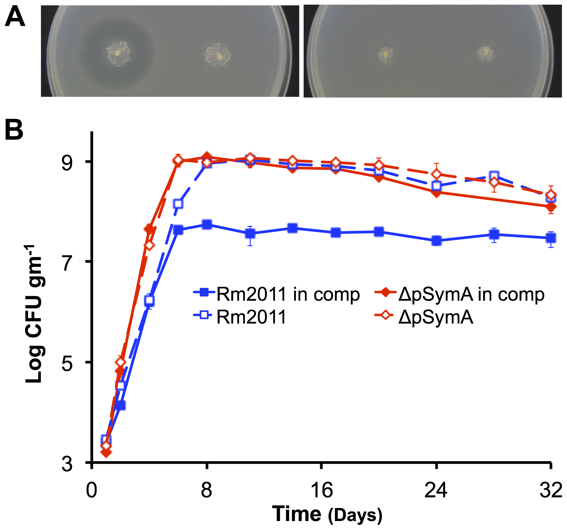 Environment specific growth inhibition by a pSymA-encoded siderophore.