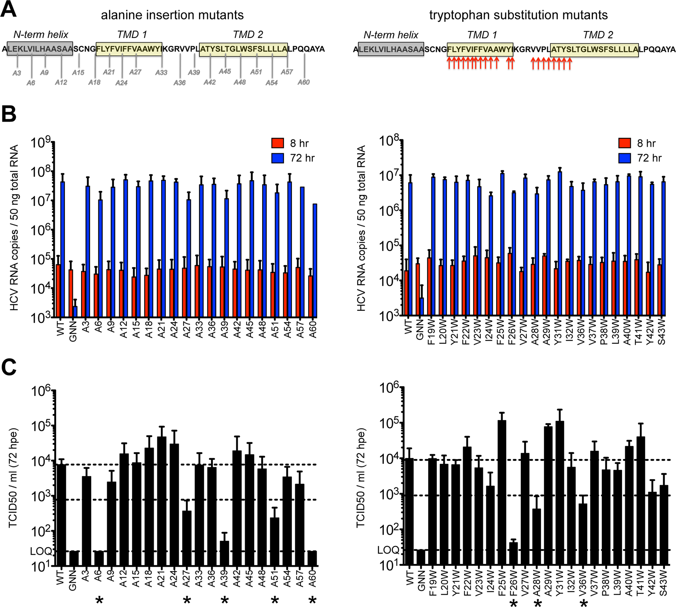 Large-scale mutagenesis of p7 has little impact on infectious virus production.