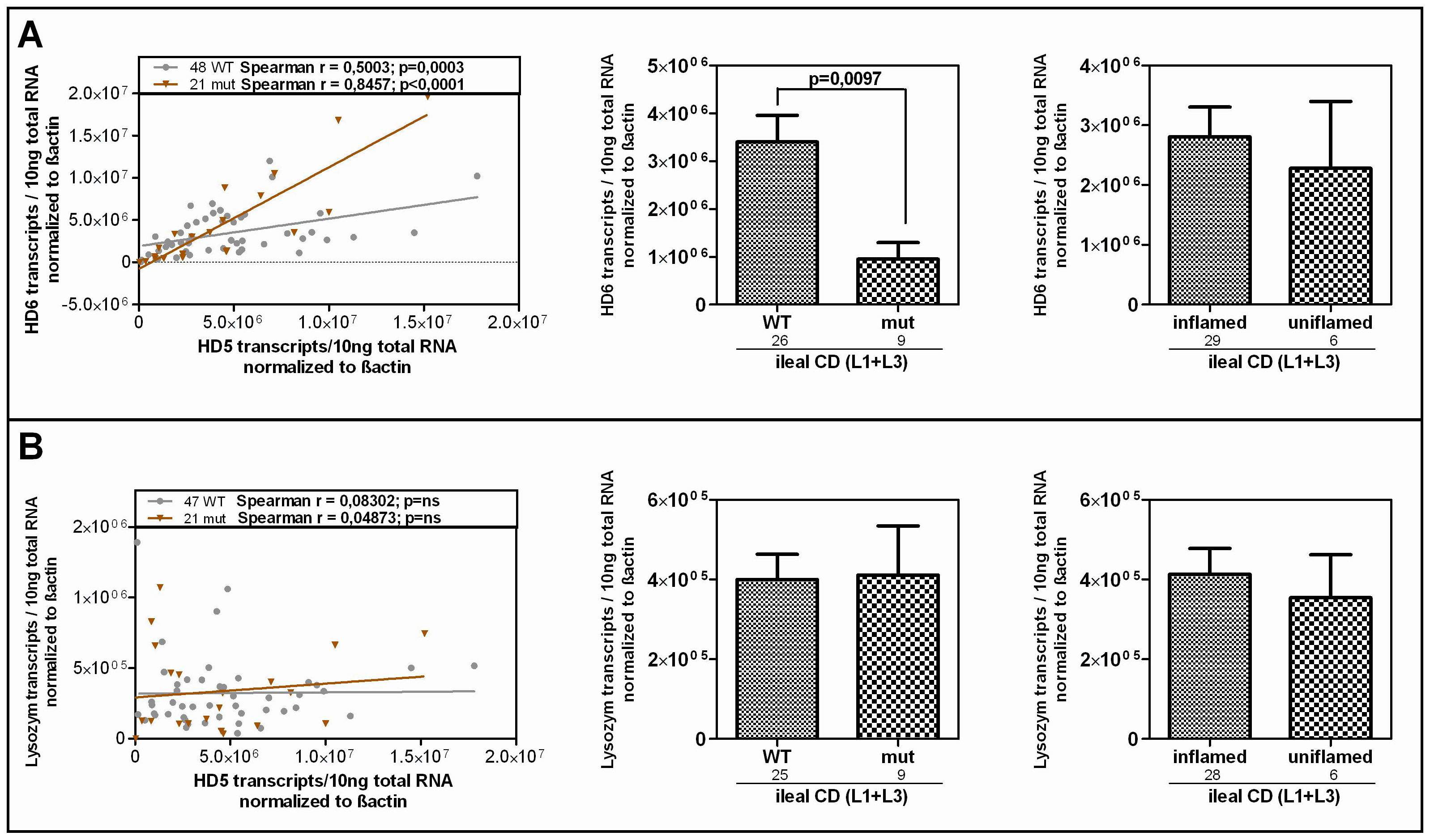 HD-6 but not lysozyme is reduced in patients who carry the rare LRP6 variant.
