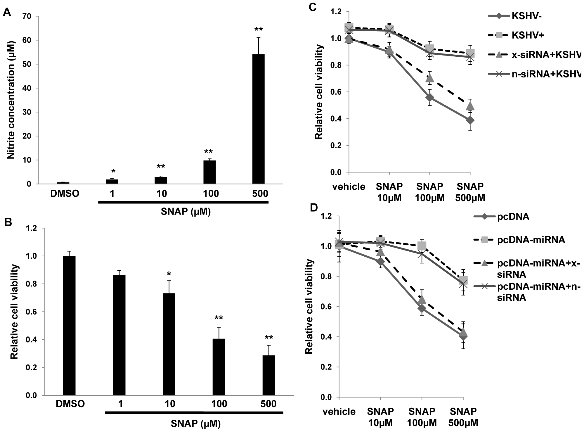 KSHV miRNAs enhance macrophage survival in an environment of oxidative stress through the upregulation of xCT.