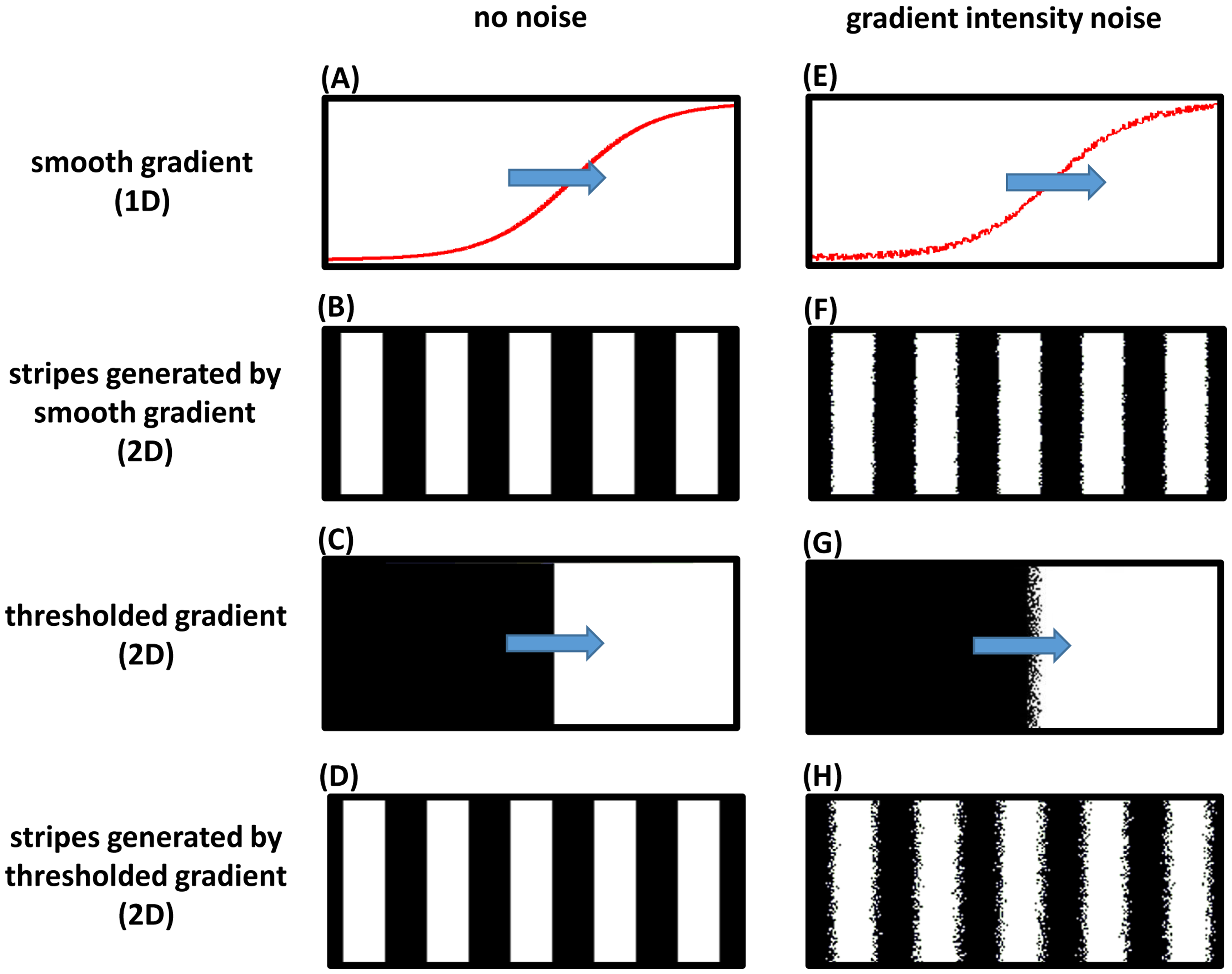 Frequency profile and robustness of the clock-and-wavefront model.