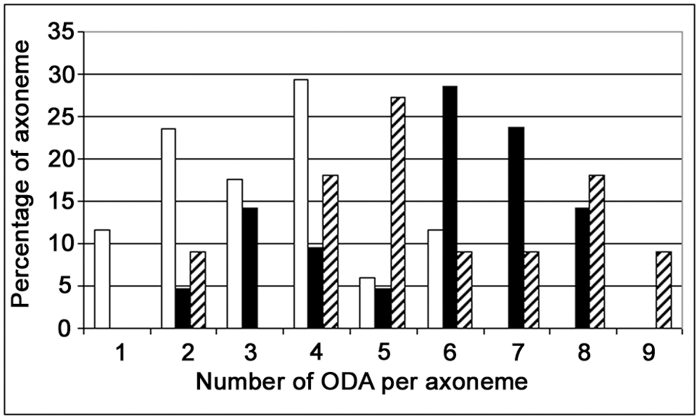 Distribution of the number of ODA per axoneme in <i>DNAI1–mutated</i> infected HAECs.