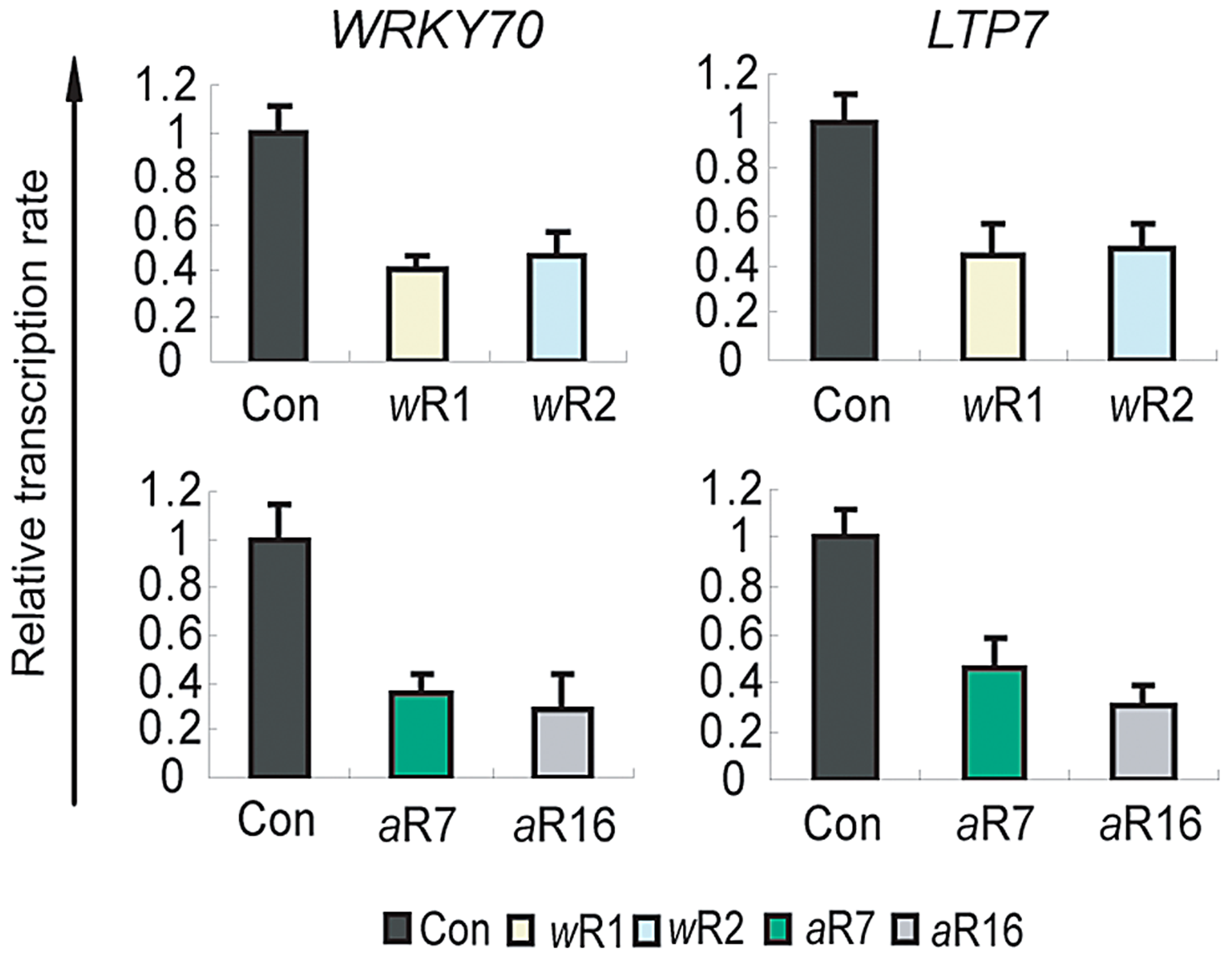 Role of AtCOMPASS–like in the transcription rates of the ATX1-regulated genes.