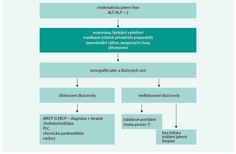 Schéma 3. Přístup k pacientovi s cholestatickou jaterní lézí.