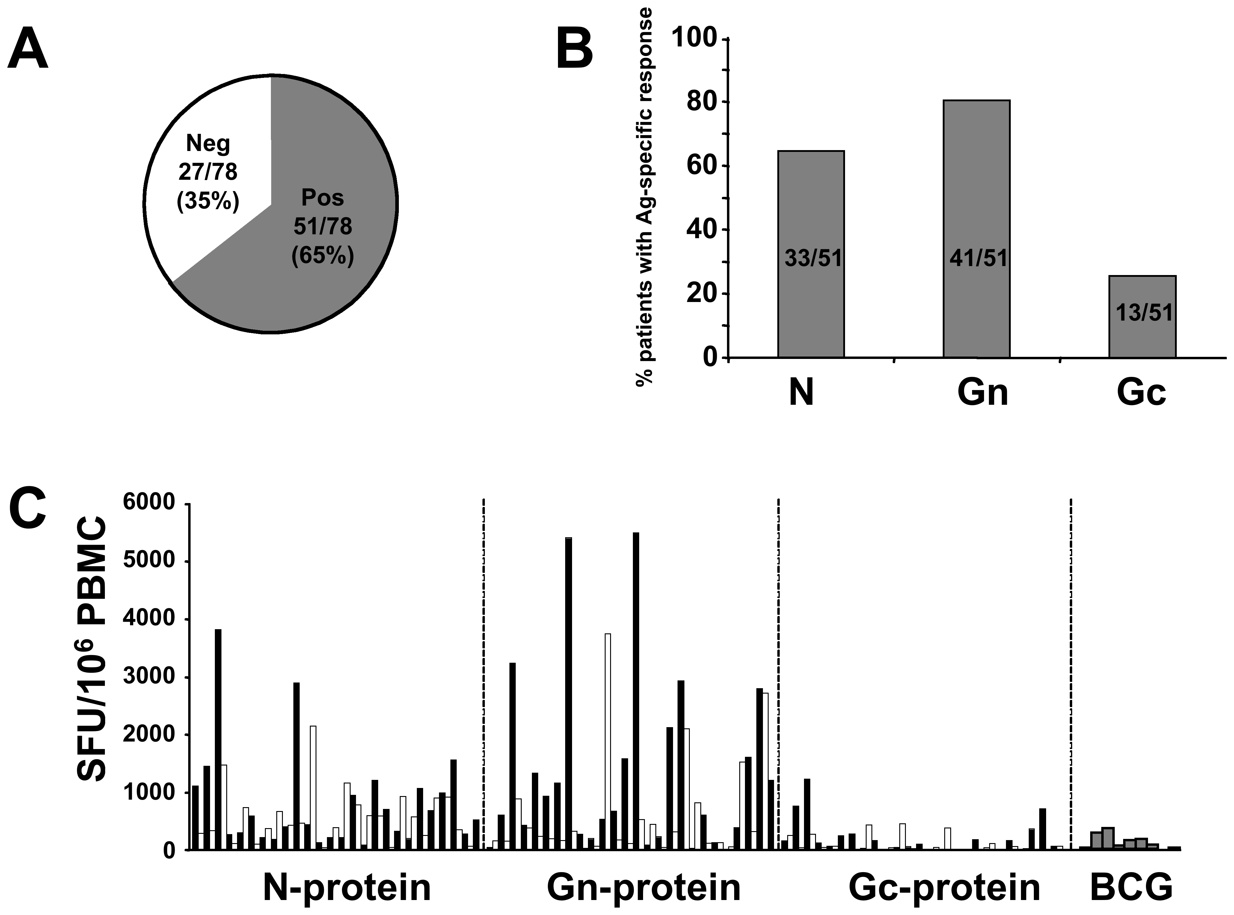 Distribution of ANDV-specific memory T-cell responses.