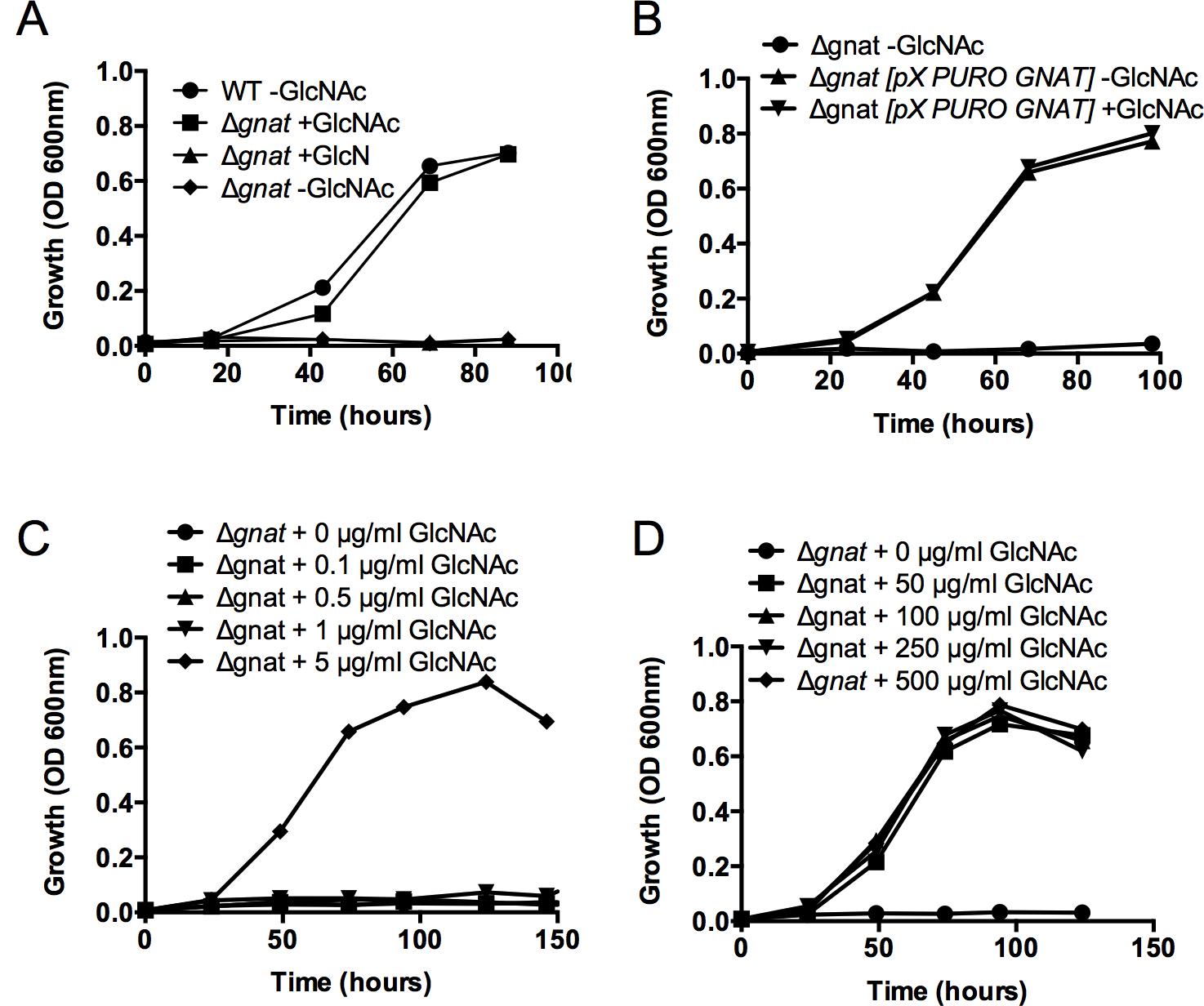 The <i>L</i>. <i>major ∆gnat</i> mutant is a GlcNAc auxotroph.
