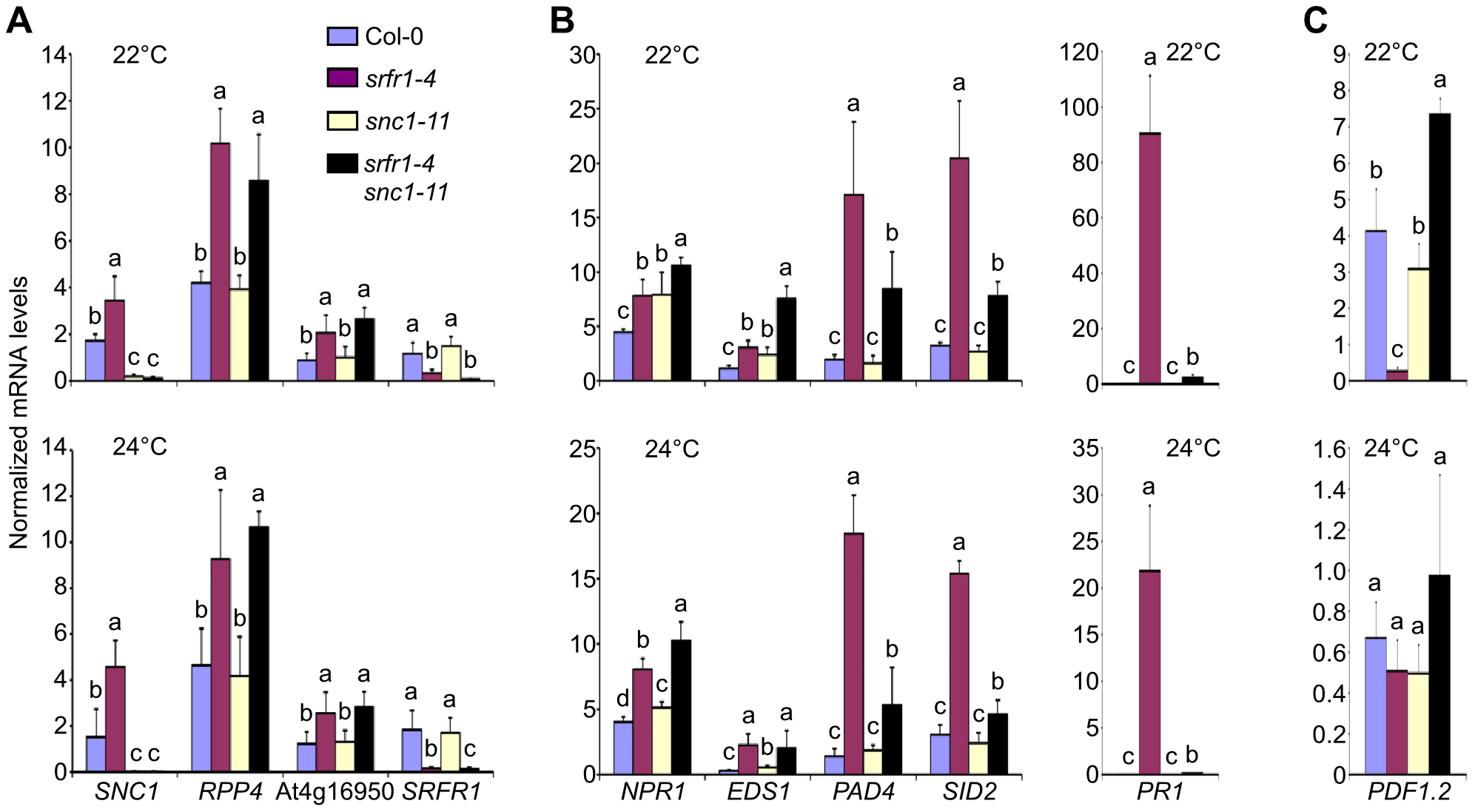 Transcript levels of defense-related genes are altered in <i>srfr1-4</i> and <i>srfr1-4 snc1-11</i>.