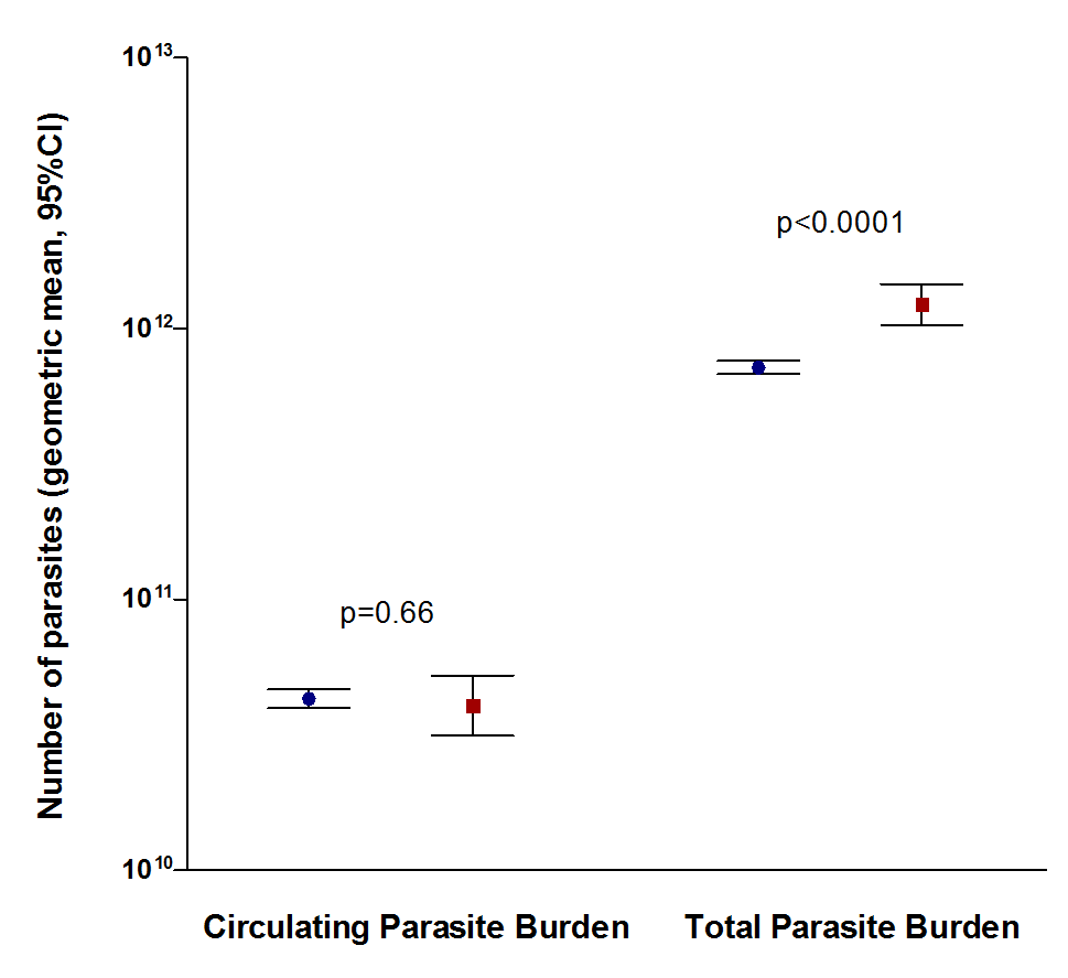 Comparison of circulating parasite burden and total parasite burden between surviving (blue circles, n = 3,070) and fatal (red squares, n = 327) cases.