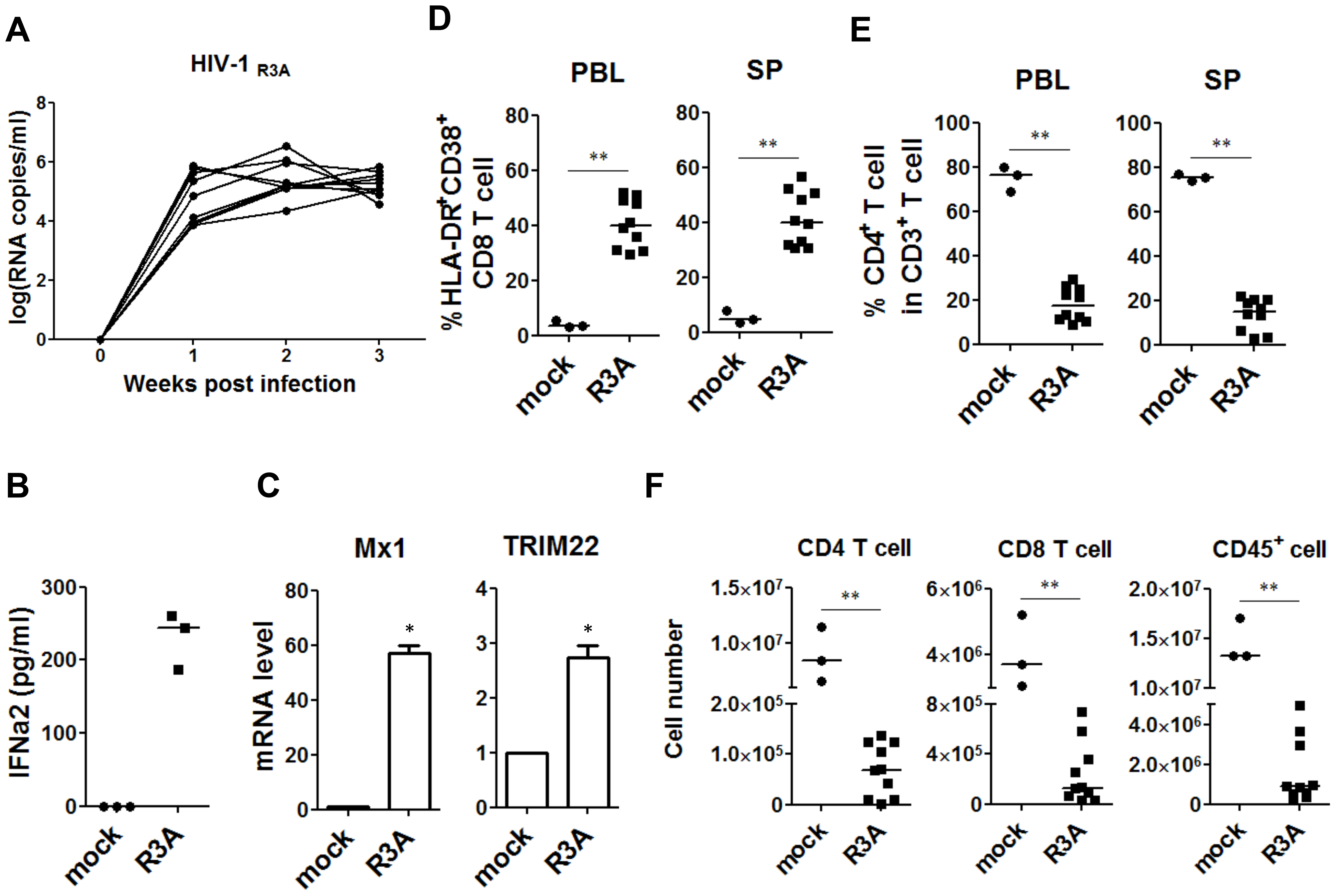 HIV-1 replication and pathogenesis in HIV-1-infected humanized mice.