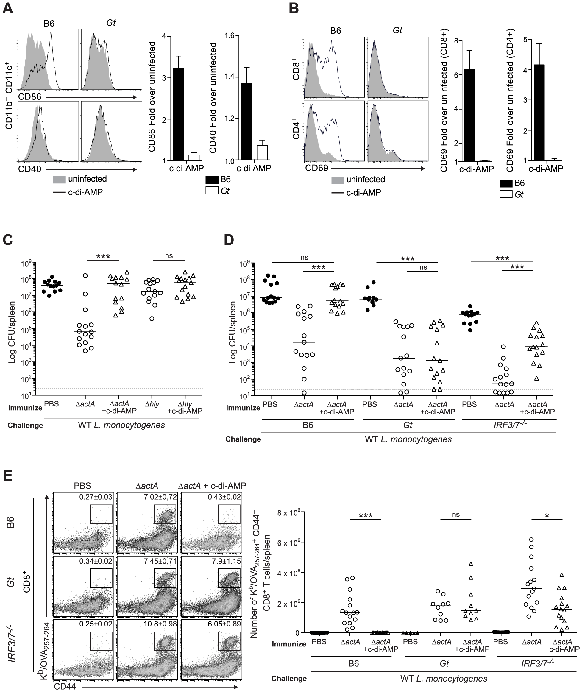 Administration of c-di-AMP during immunization inhibits CD8<sup>+</sup> T cell expansion and protective immunity upon <i>L. monocytogenes</i> reinfection.