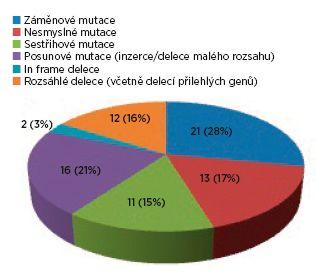 Spektrum mutací v TSC2 genu