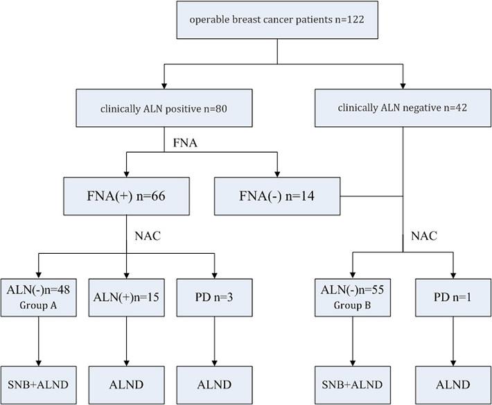 Sentinel node biopsy following neoadjuvant chemotherapy study design. ALN, axillary lymph nodes; FNA, fine-needle aspiration; NAC, neoadjuvant chemotherapy; PD, progression of disease; SNB, sentinel node biopsy; ALND, axillary lymph node dissection