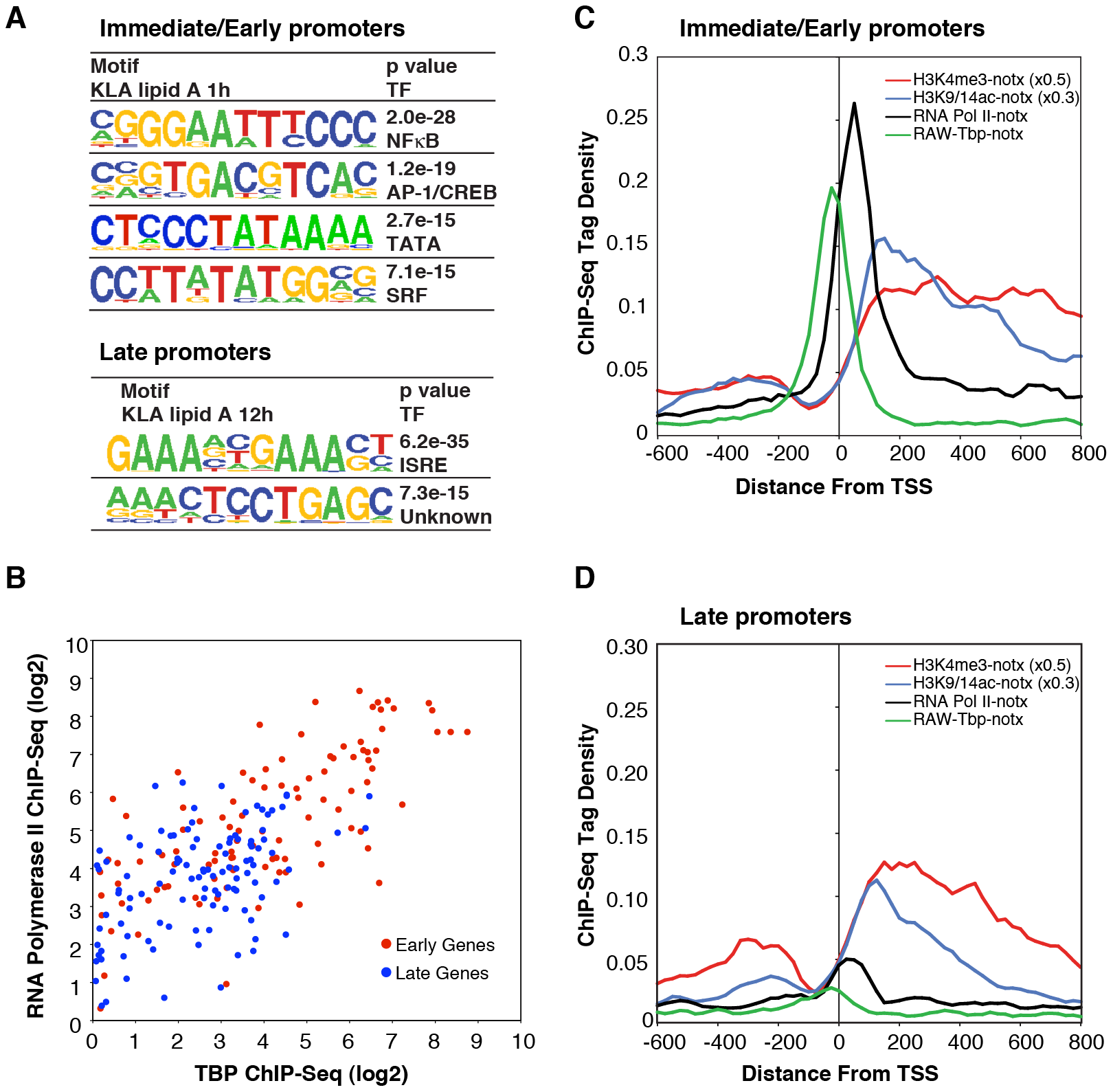 Differential use of signal-dependent transcription factors and TBP in I/E and late promoters.