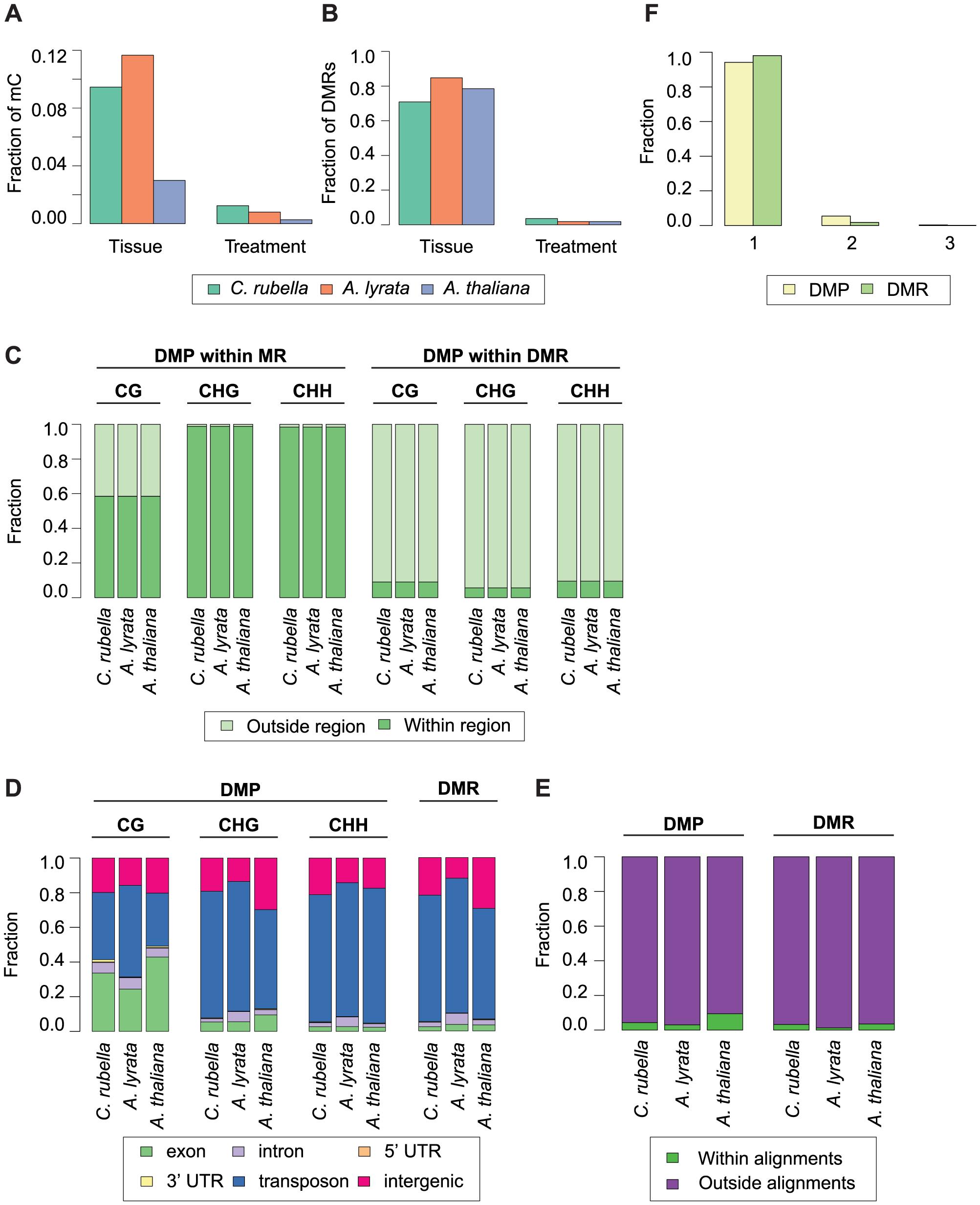 Intraspecific variation in DNA methylation.
