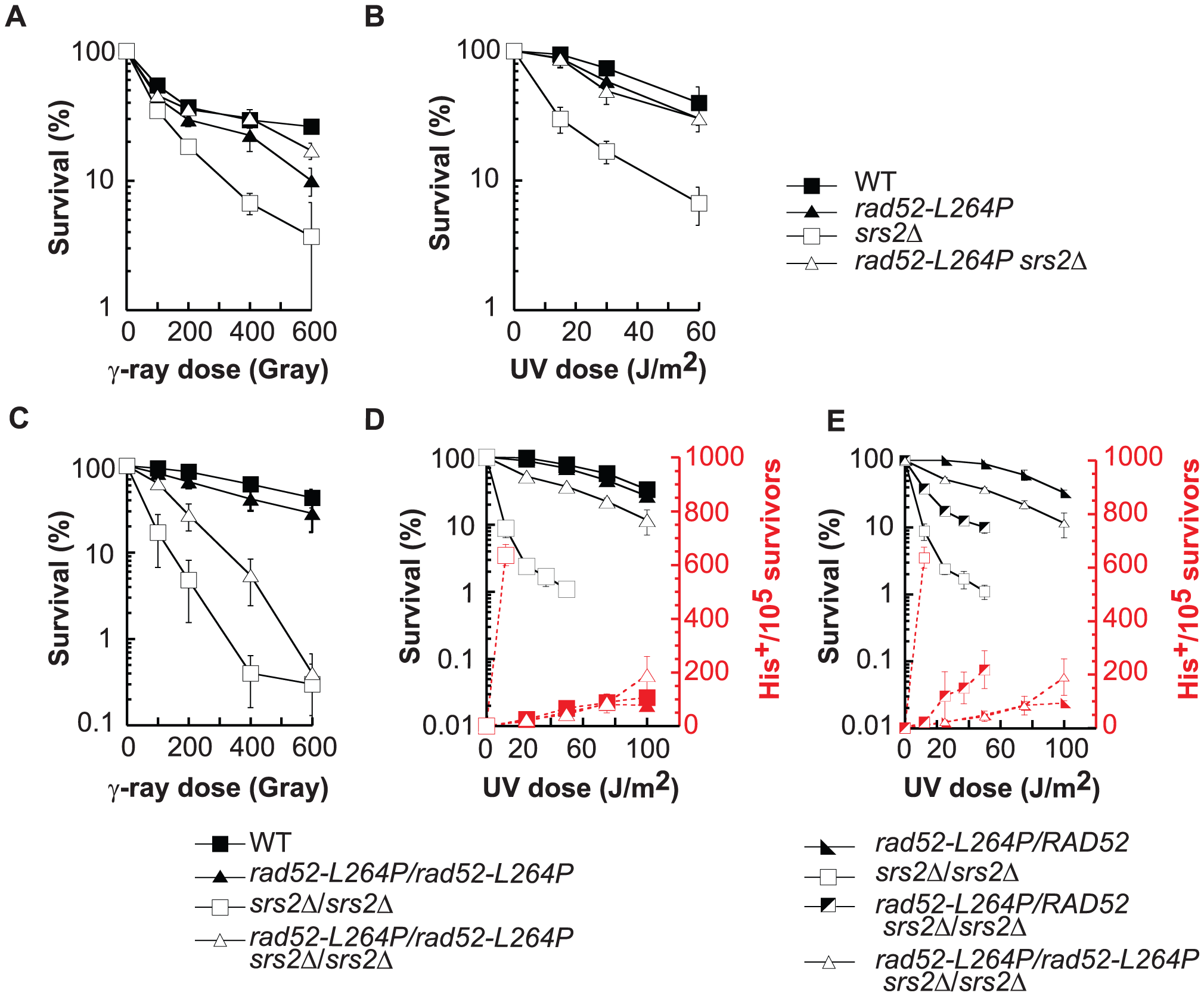 <i>rad52-L264P</i> does not affect DNA repair or HR, whereas it completely suppresses <i>srs2</i>Δ phenotypes.