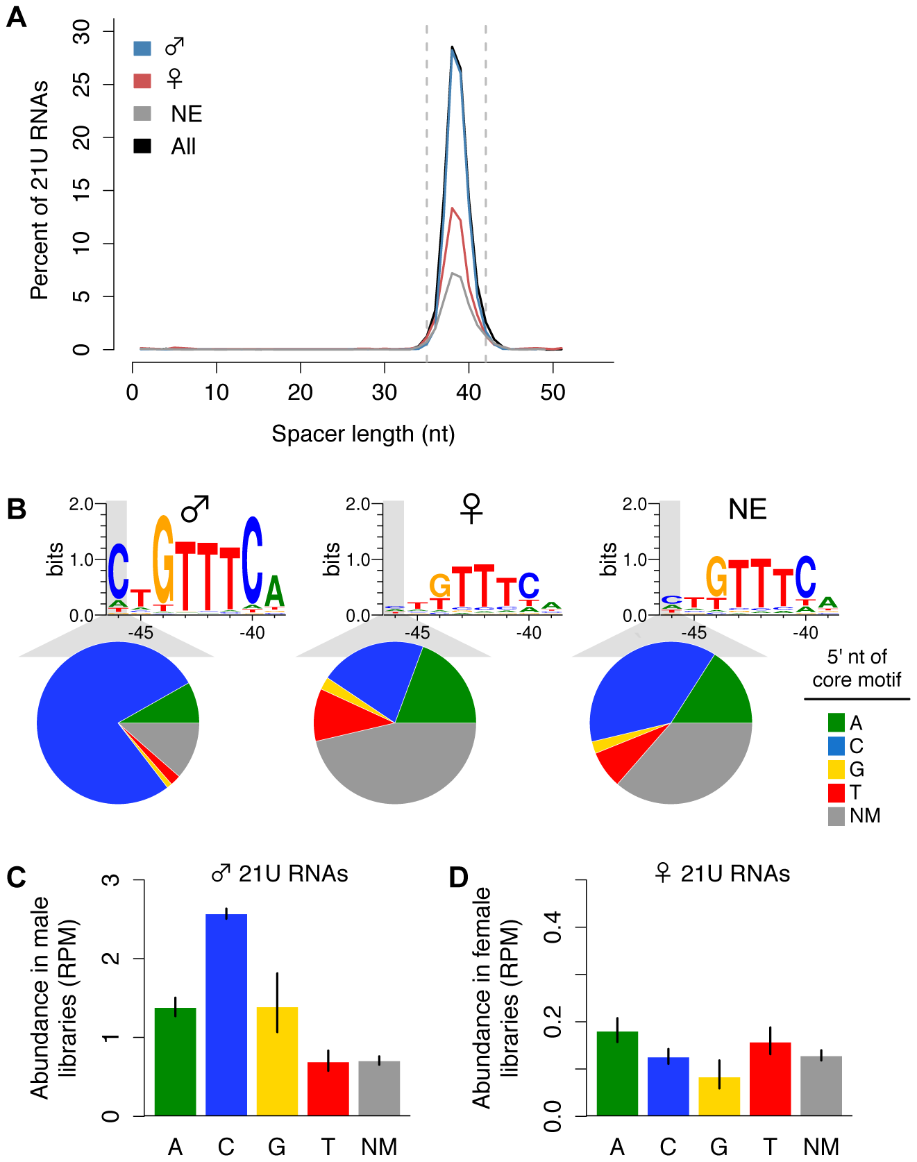 Variation in the core upstream motif correlates with 21U RNA germline enrichment.