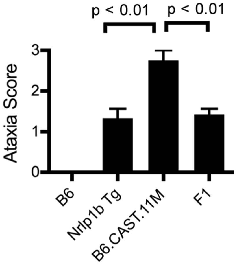 Severity of LT-induced ERP is controlled by a gene(s) on chromosome 11.