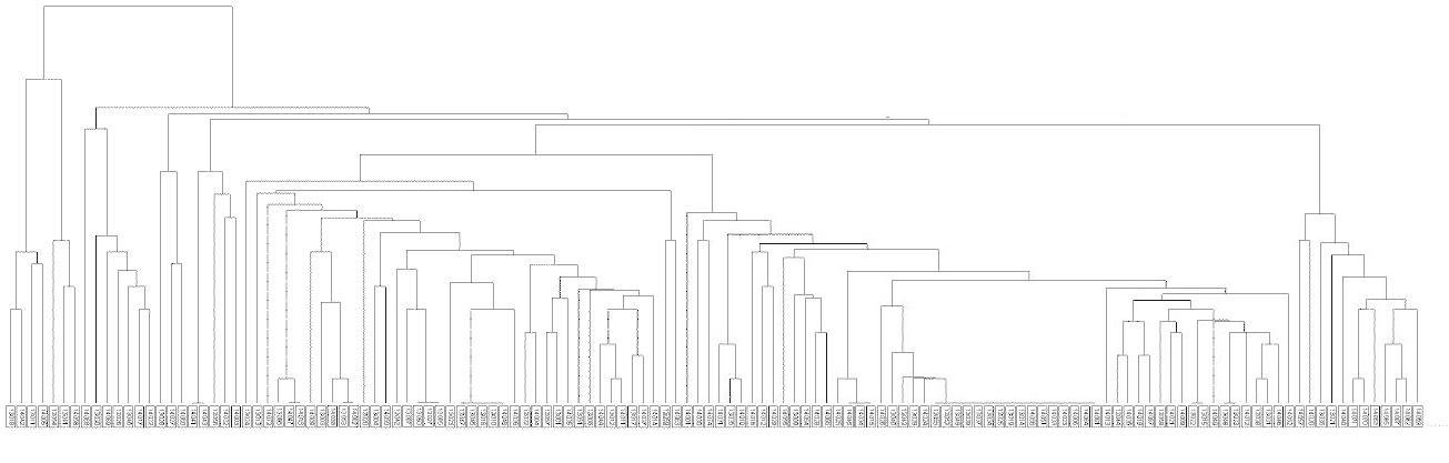 Dendrogram kmenů <i>M. tuberculosis</i> v Praze 2013–2014<br> Fig. 1. Dendrogram of <i>M. tuberculosis</i> strains from Prague, 2013–2014