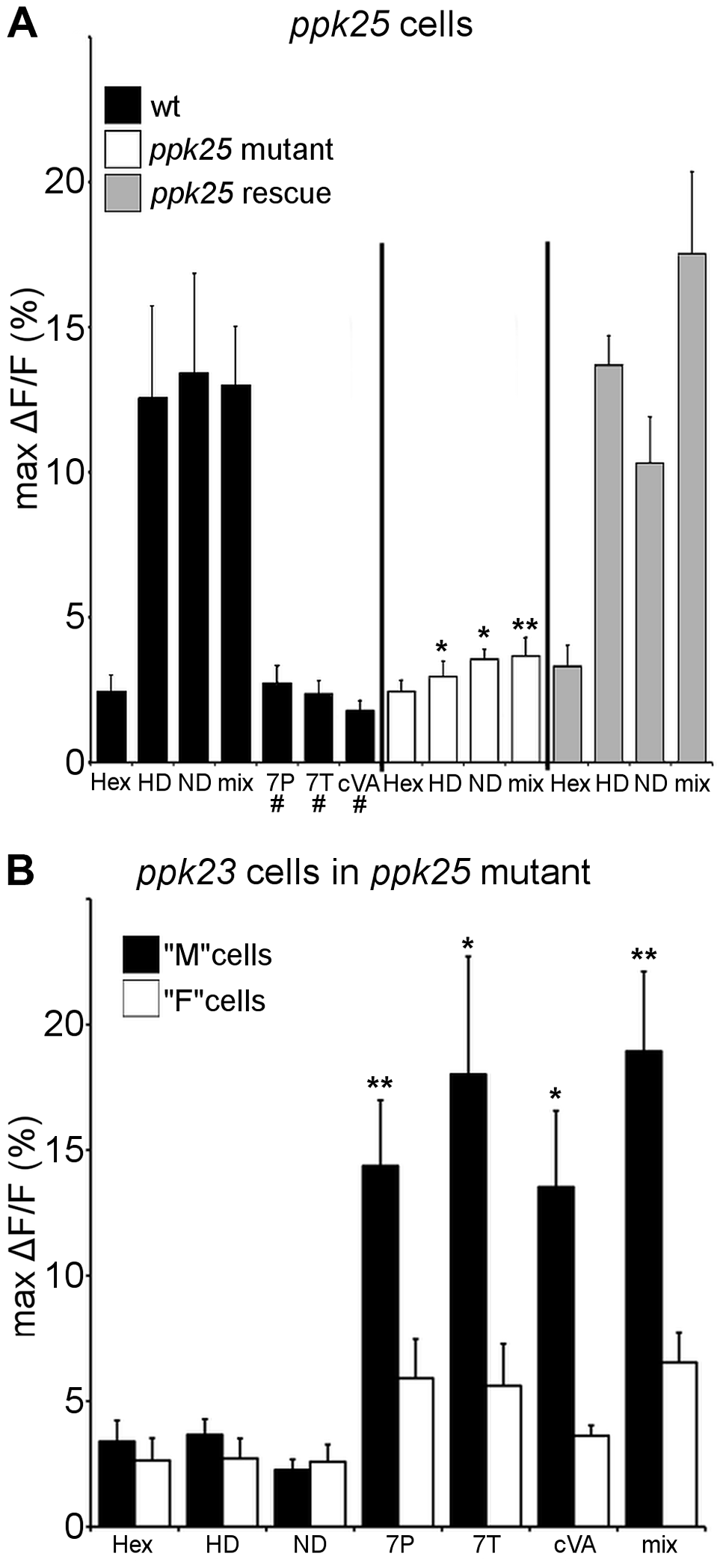 Calcium imaging reveals that <i>ppk25</i> cells respond specifically to female pheromones.