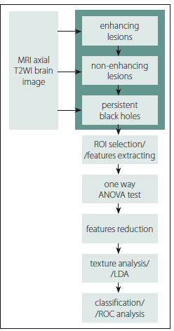 Fig. 2. Overview of texture analysis process on brain MRI images.